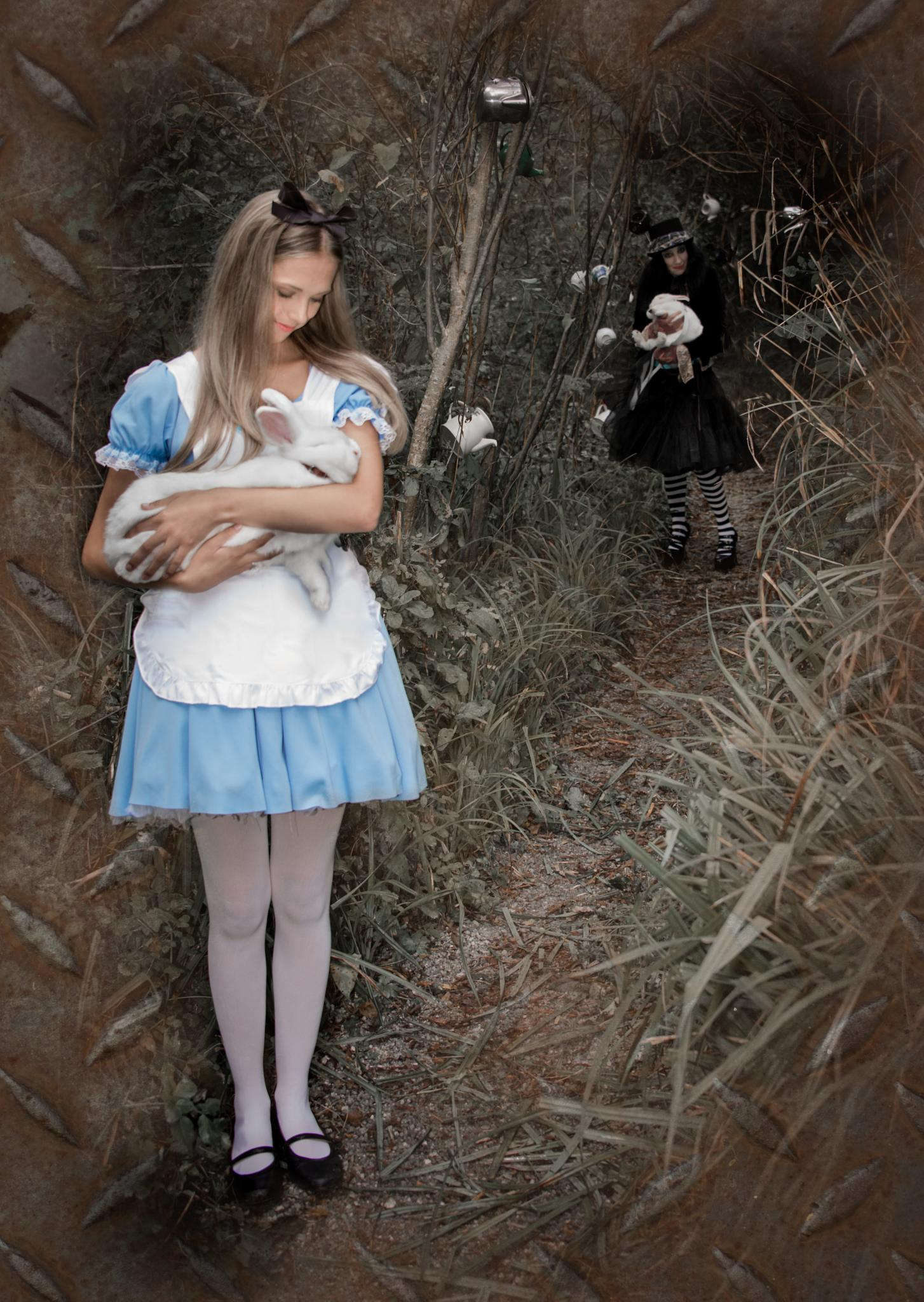 Alice and mad hatter by Mad Spaniel Photography