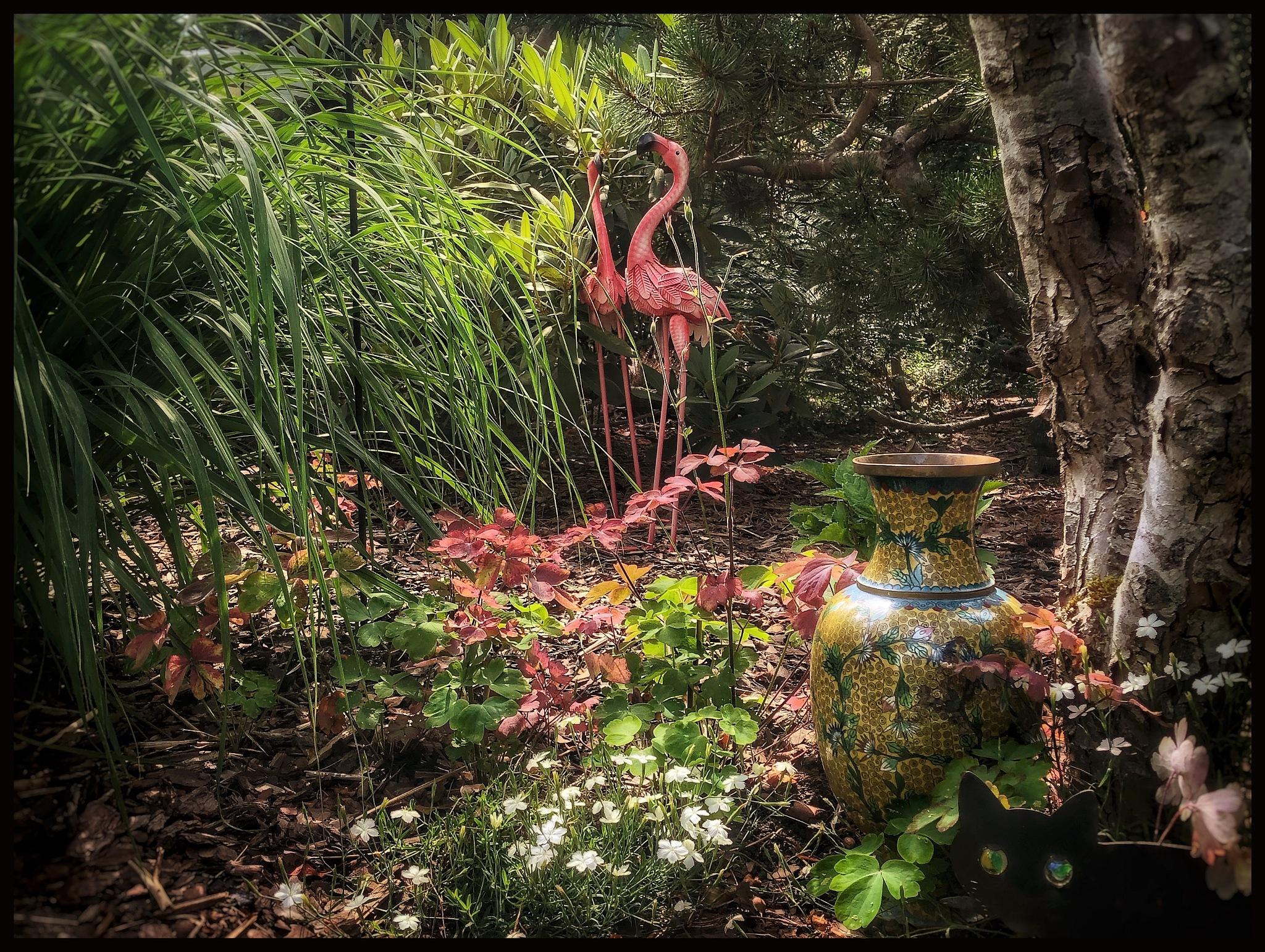 A part of our garden... by Mats Örn