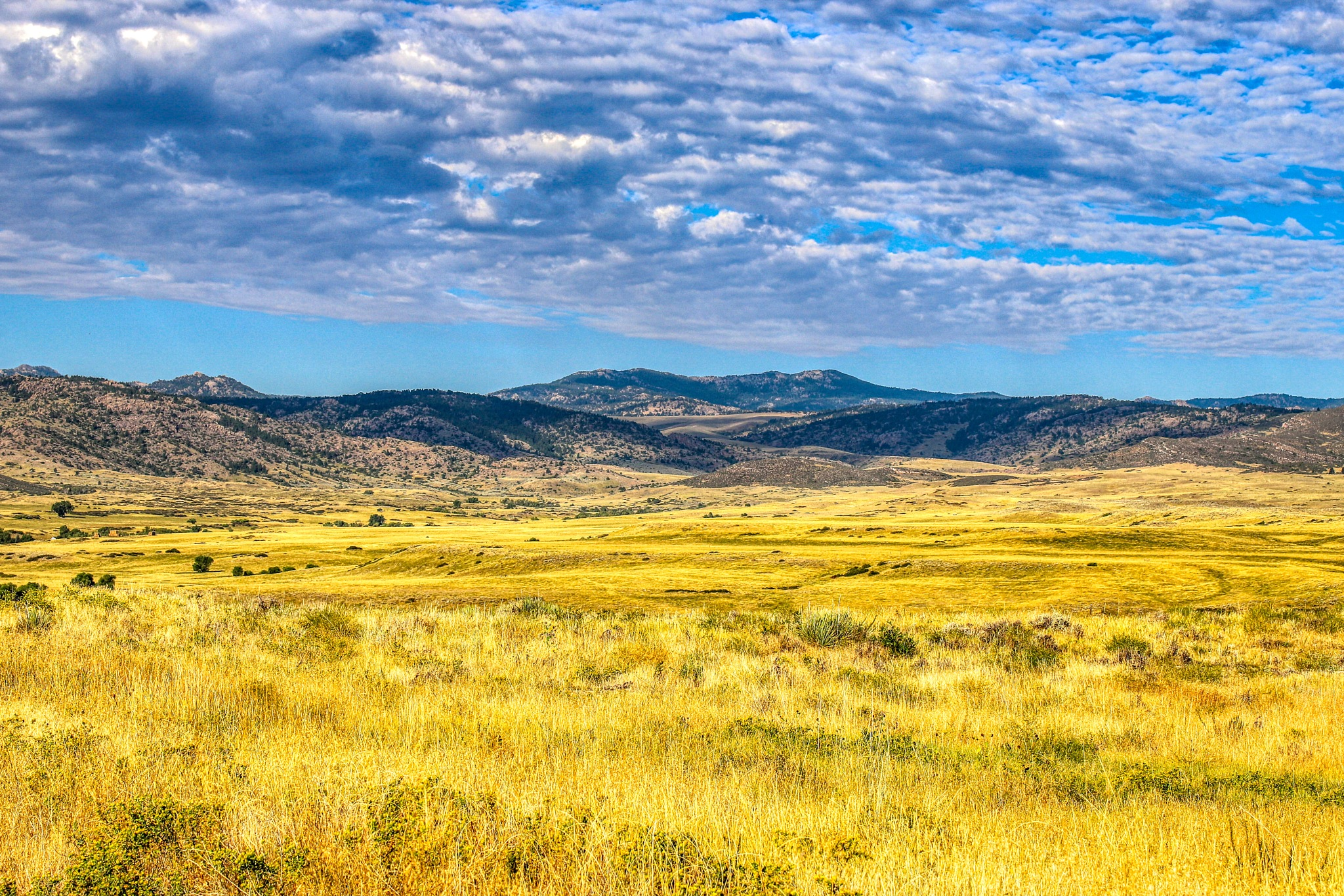 Wyoming Morning In The Mountains  by James Stewart