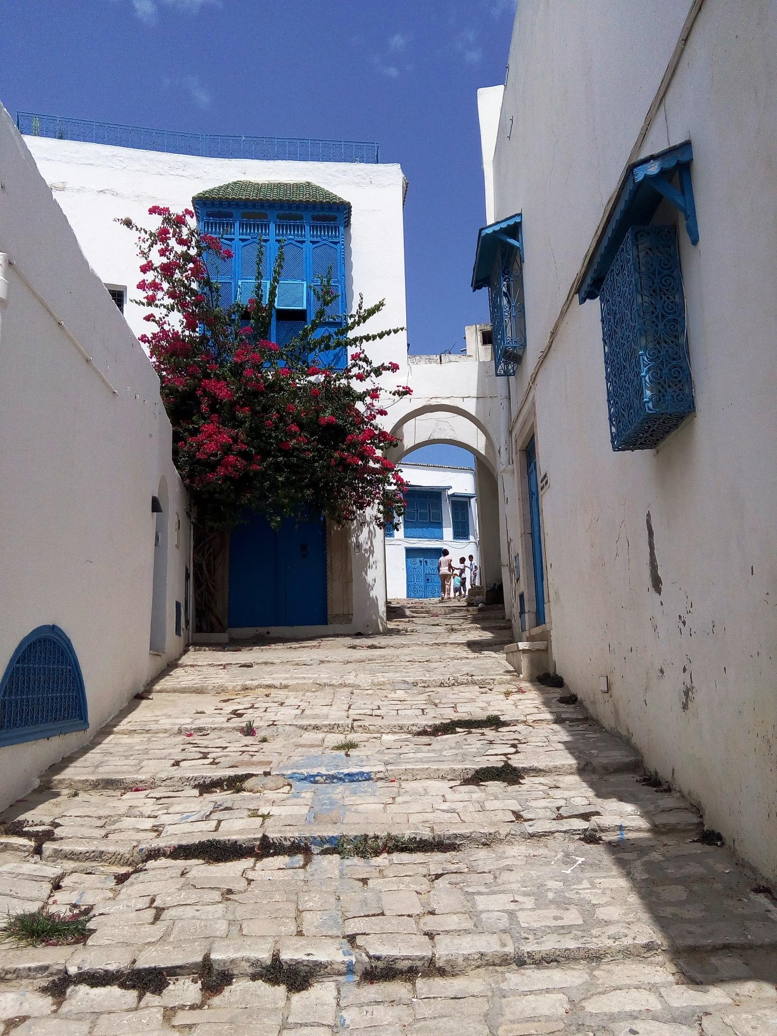 The Balcony Of The Mediterranean by Nedim ✅