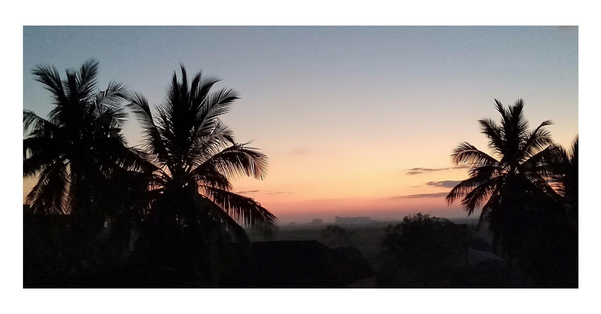 Nature sunrise by Rishi Reddy