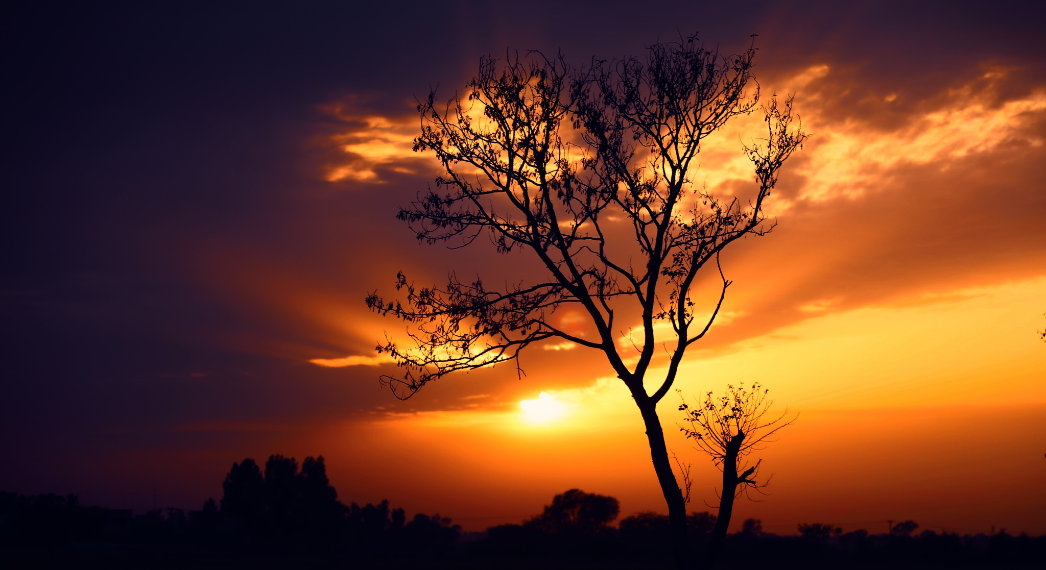 Sunset by Nouman Gee (Official)