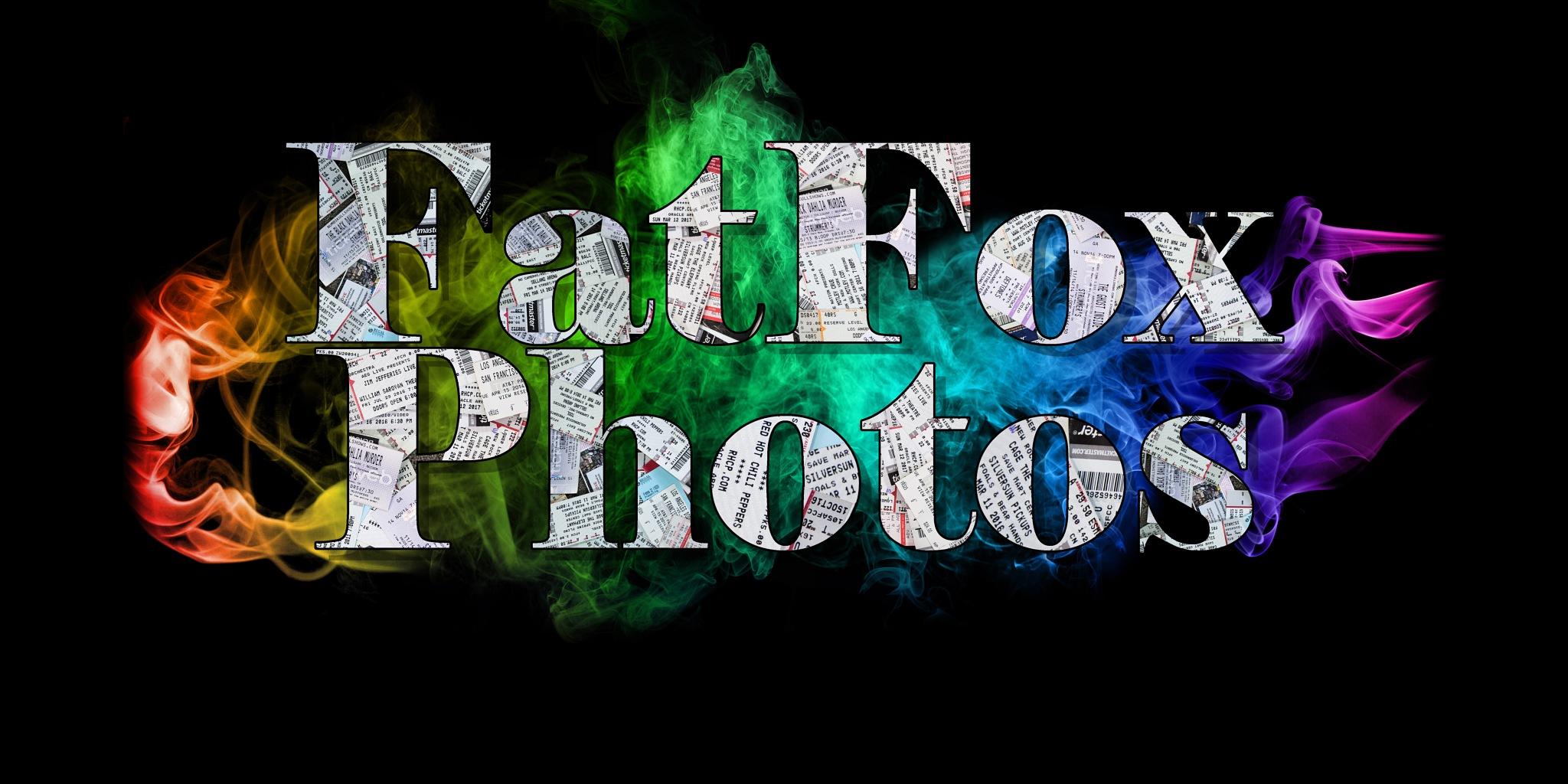 FatFox by Joshua Martinez