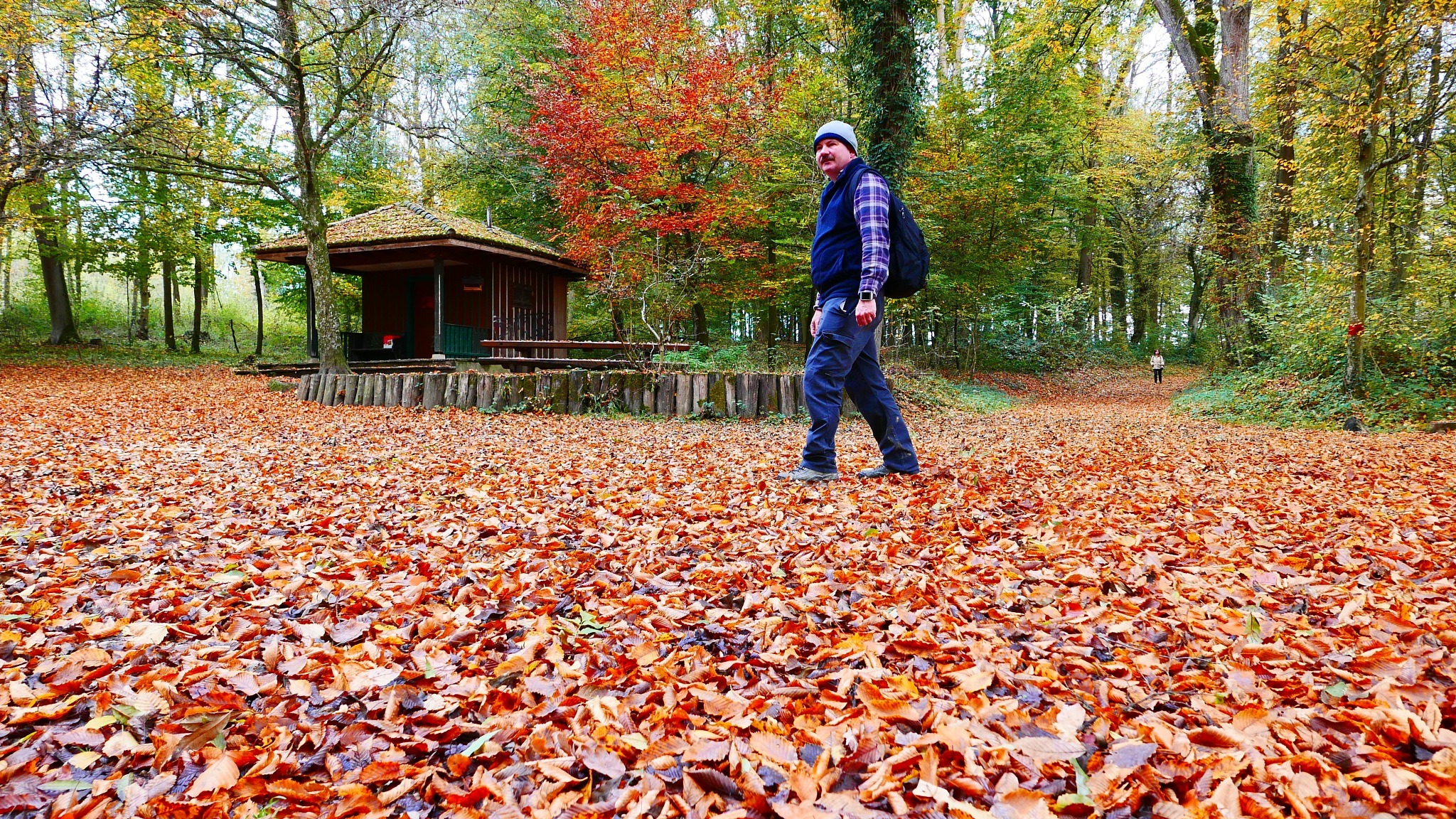 Der Herbstspaziergang by percy ottinger