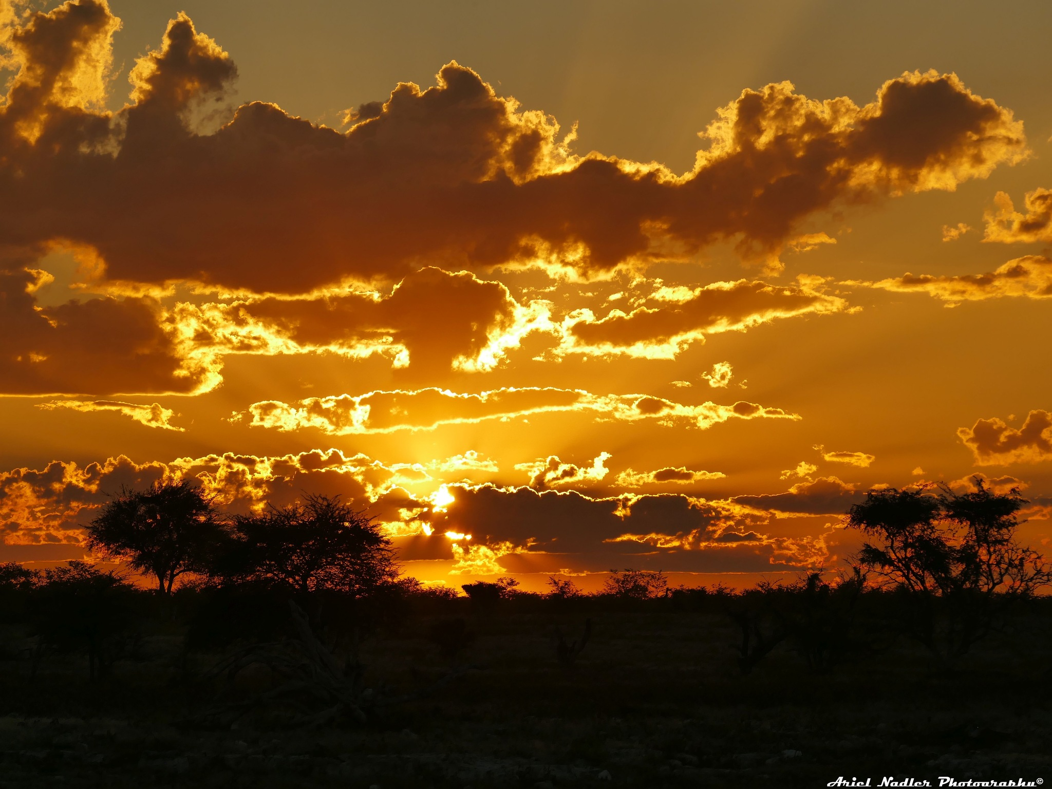 VIEWS FROM NAMIBIA-AFRICA by Ariel Nadler