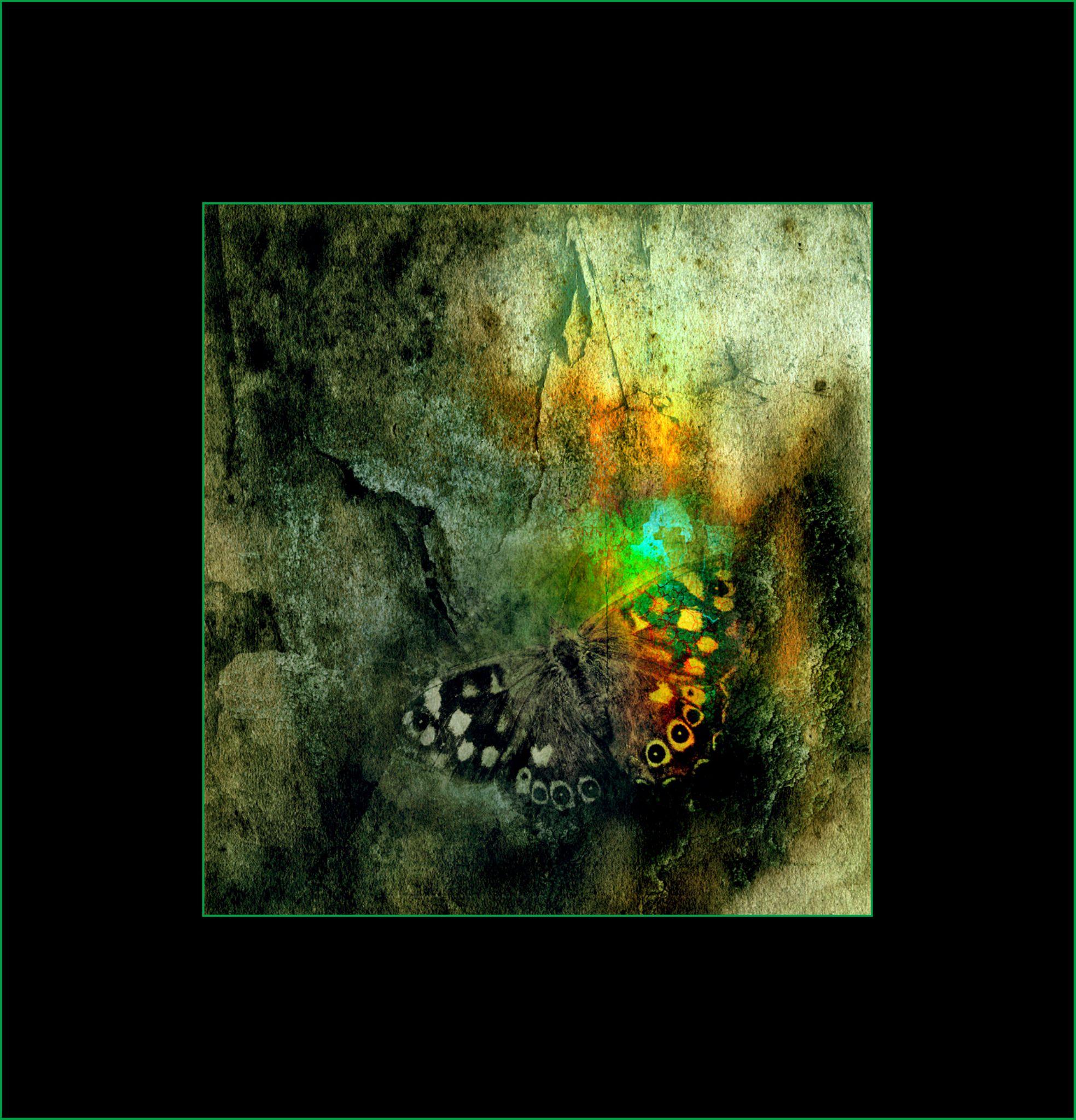 Untitled by Helen Burridge