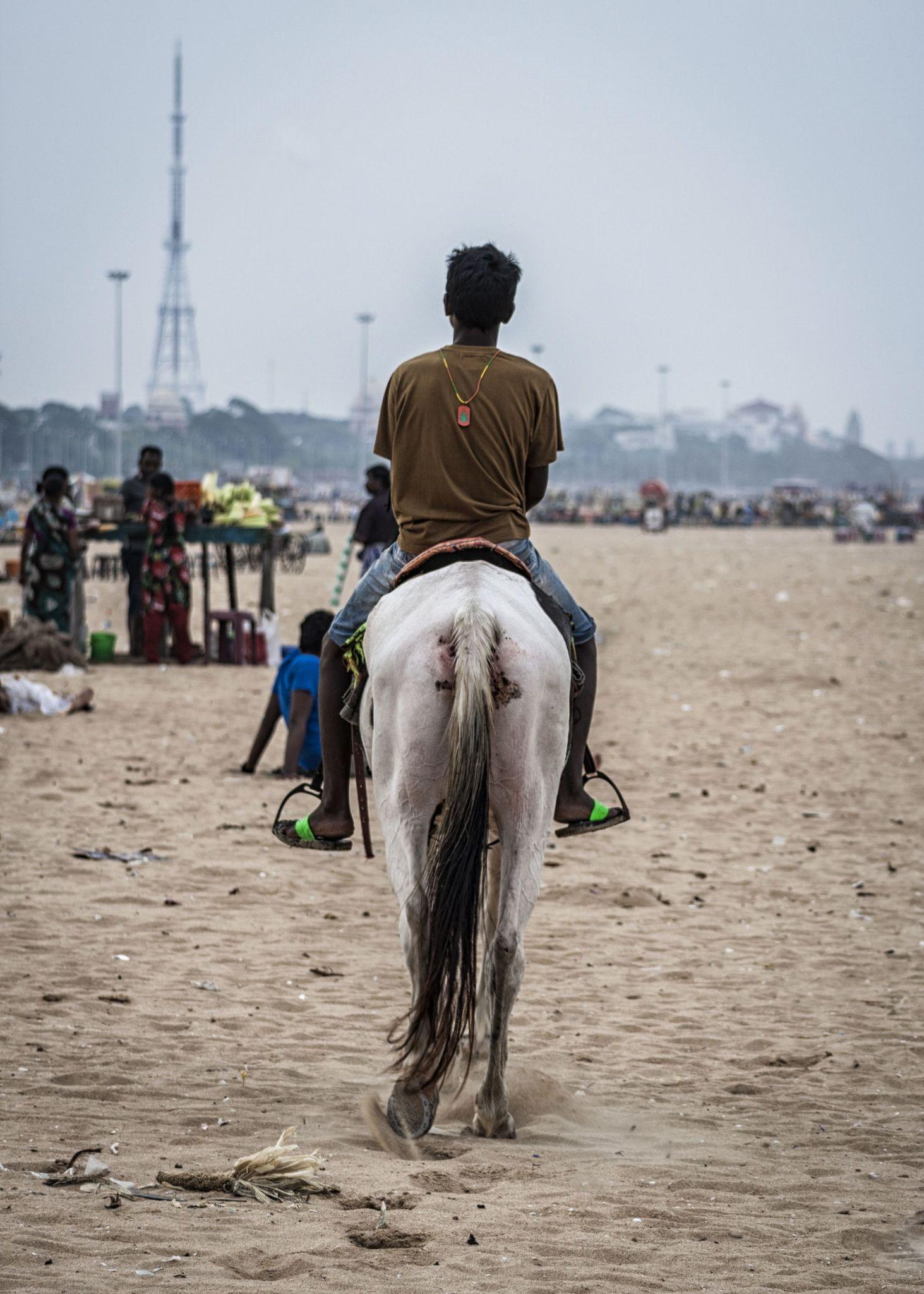 The Ride Back by Vikram Seshadri