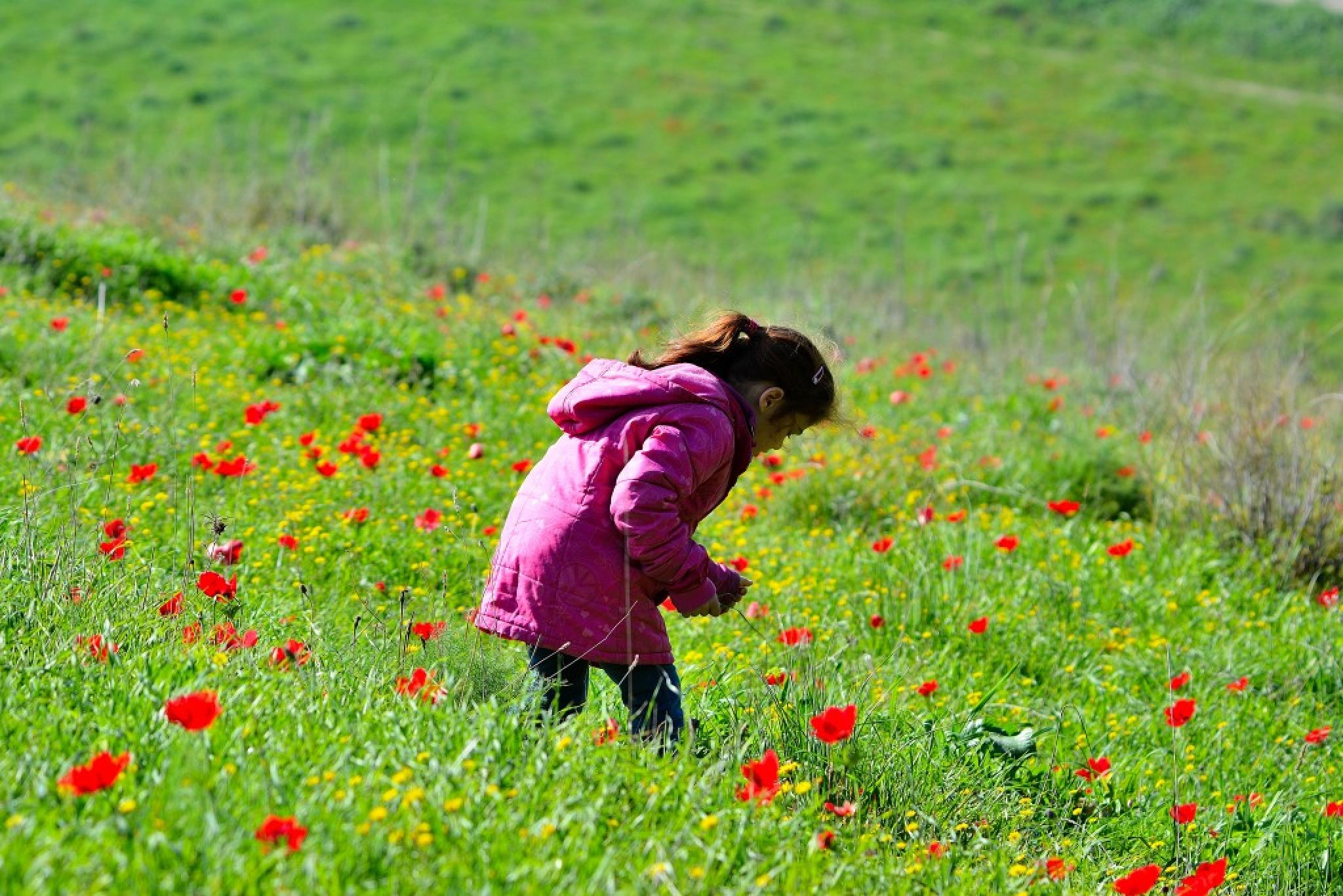 Children and flowers, there is more beautiful combination between them? by אשר שמולביץ