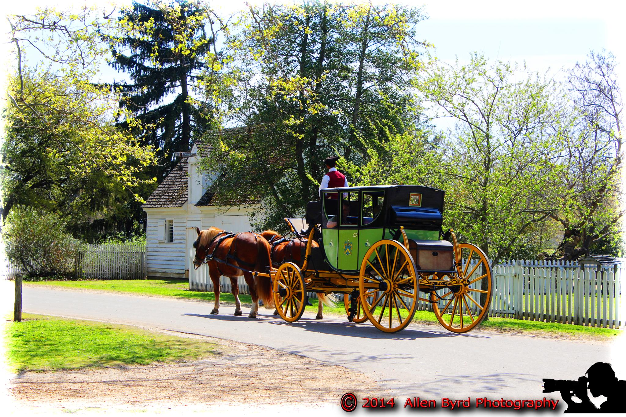 Williamsburg Carriage Ride by Allen Byrd Photography