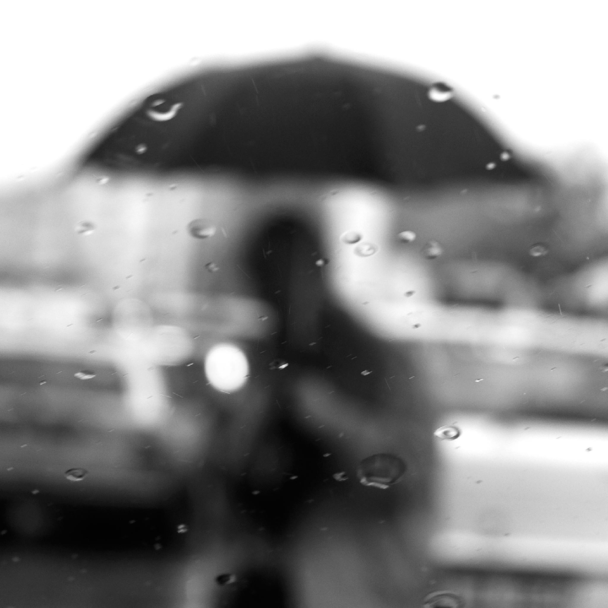Photo in Black and White #autumn #street #people #rain