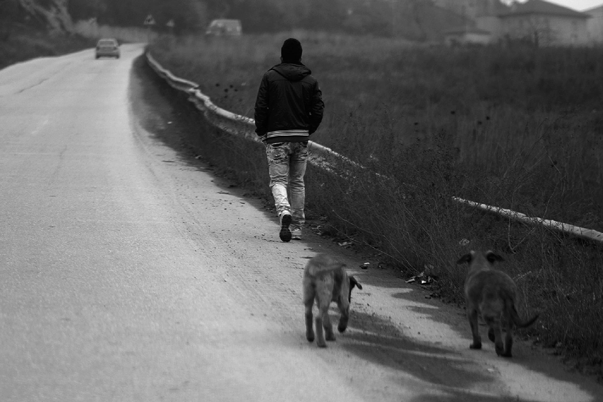 Wait for us by Ziya YILDIRIM