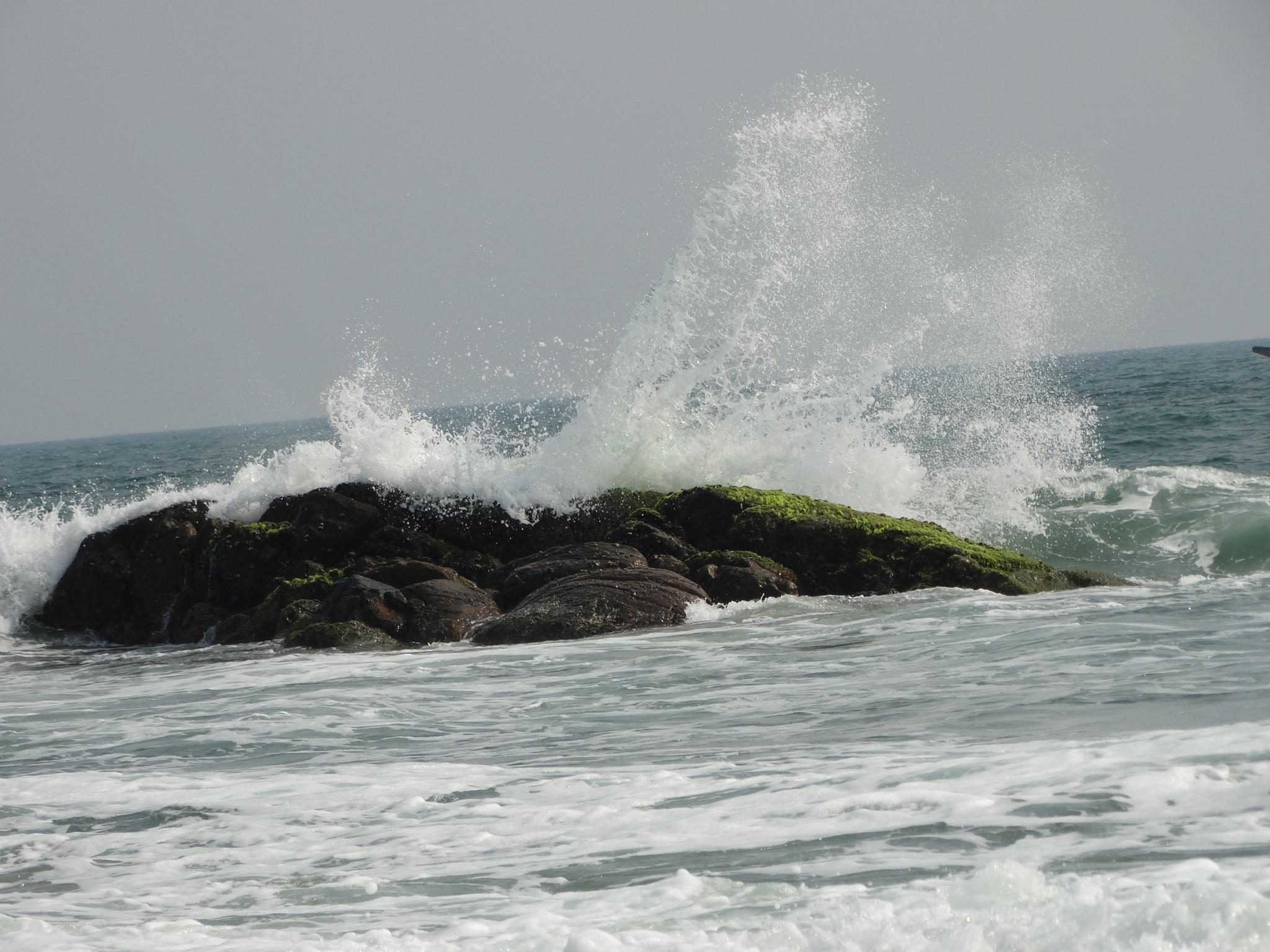 SeaShore by Sandeep Sandy