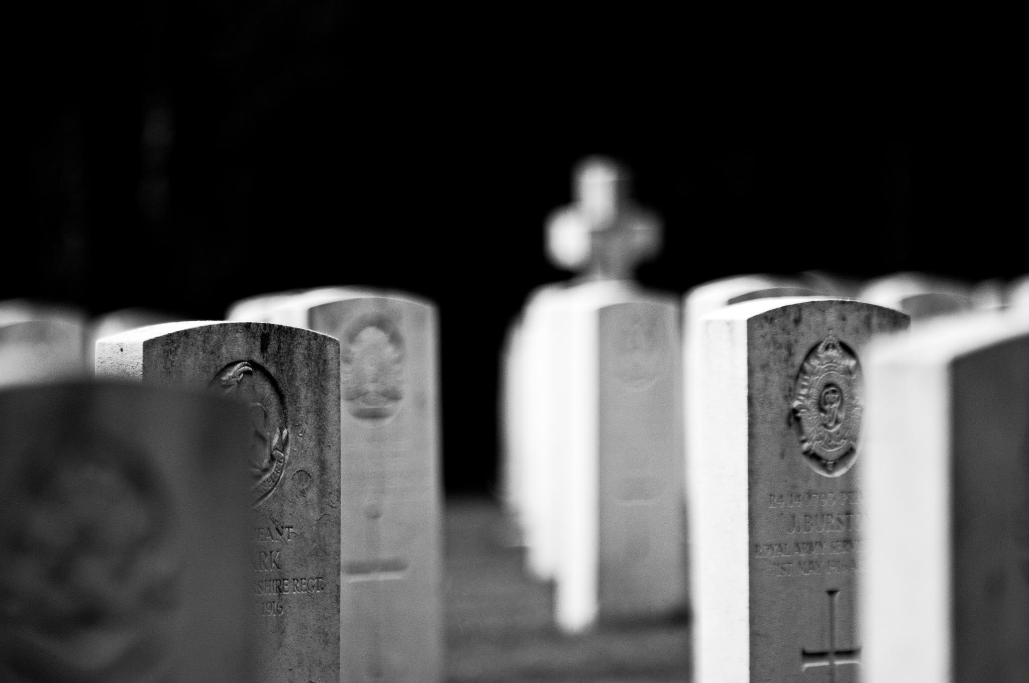 Remember Them... by Richard Bull