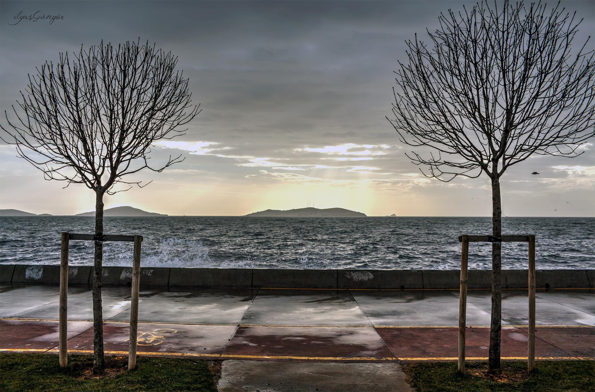 adalara karşı by ilyas