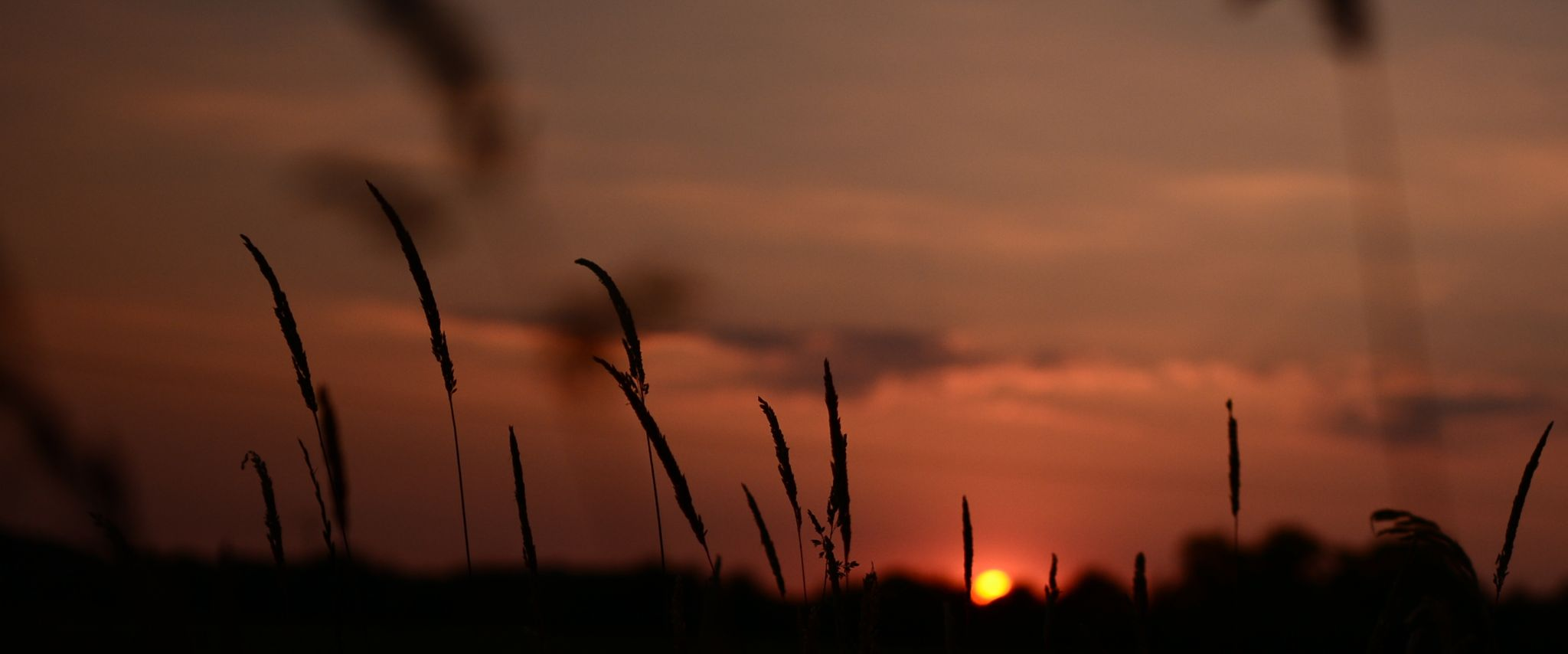 nature - couche soleil by YnnaDalli