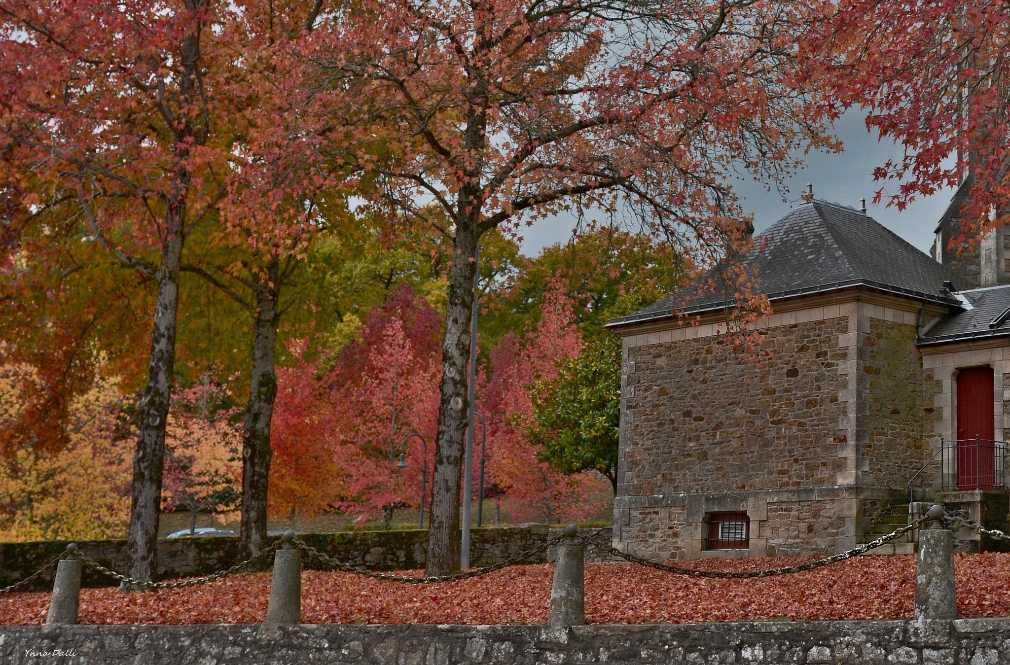 """""""Les couleurs de l'automne"""" by YnnaDalli"""