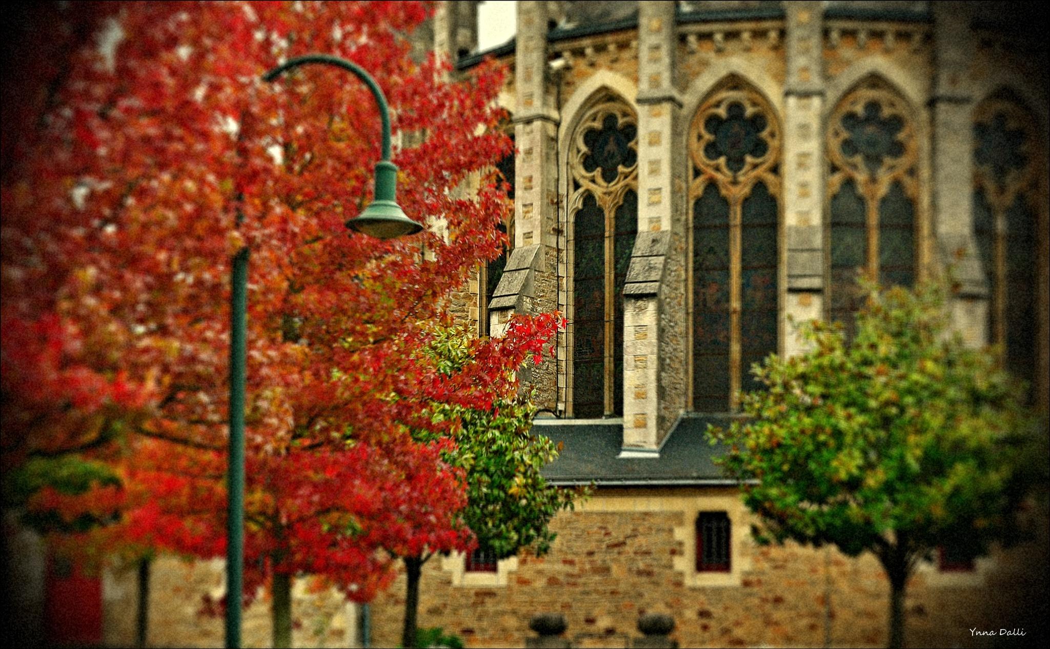 """""""  ah..l'automne !"""" by YnnaDalli"""