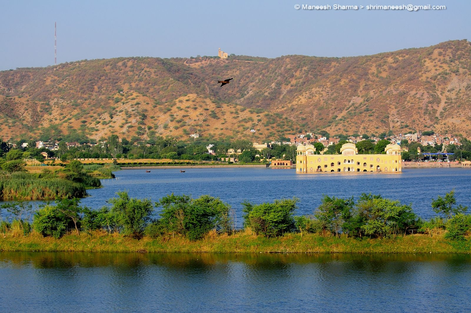 JAL MAHAL the JEWEL of Jaipur. India by Maneesh Sharma