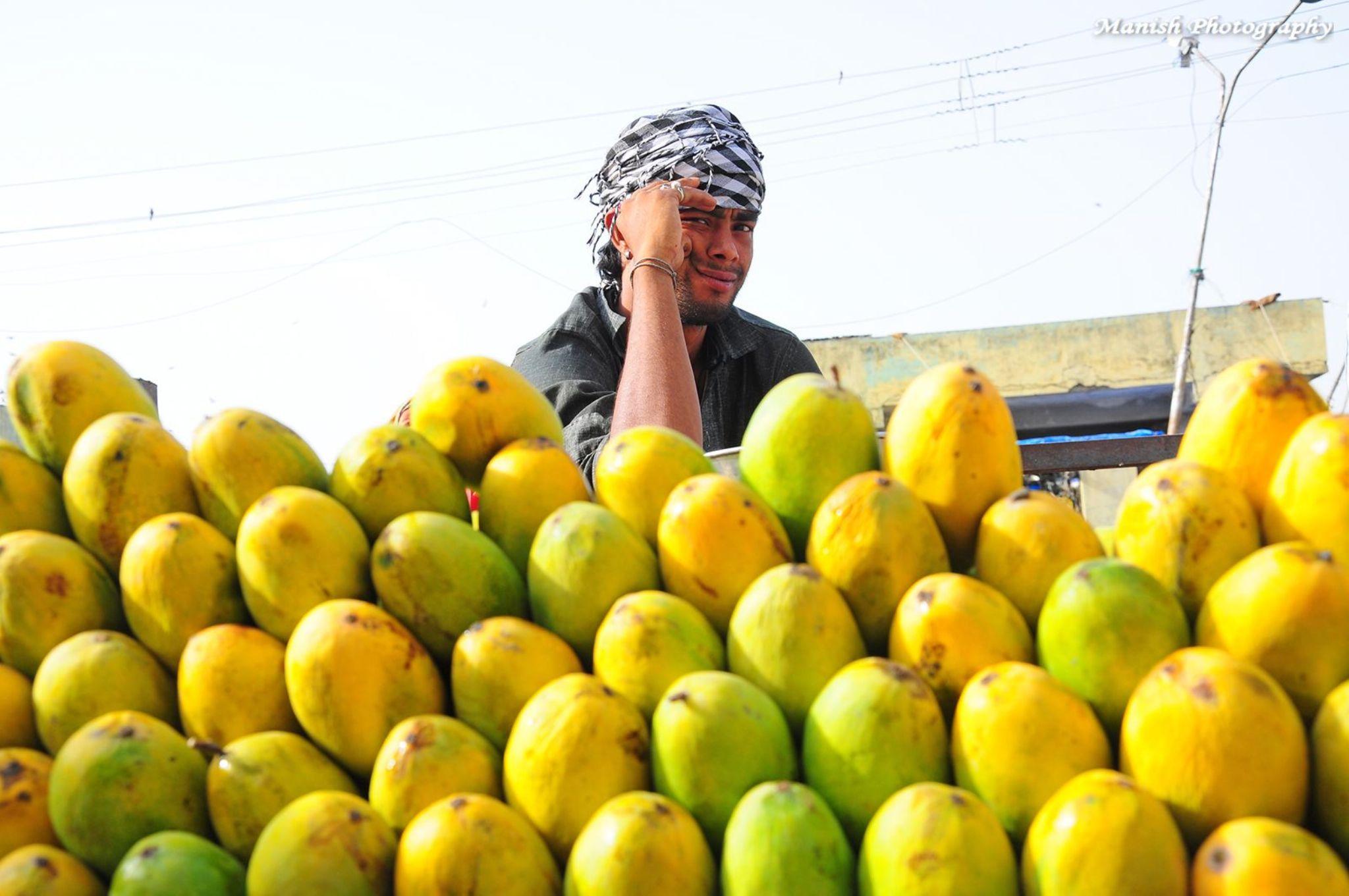 """Fruit seller  PhotoWalk :- """"COLOURS"""" in LAL KOTHI MANDI. Jaipur 29/06/2014 by Maneesh Sharma"""