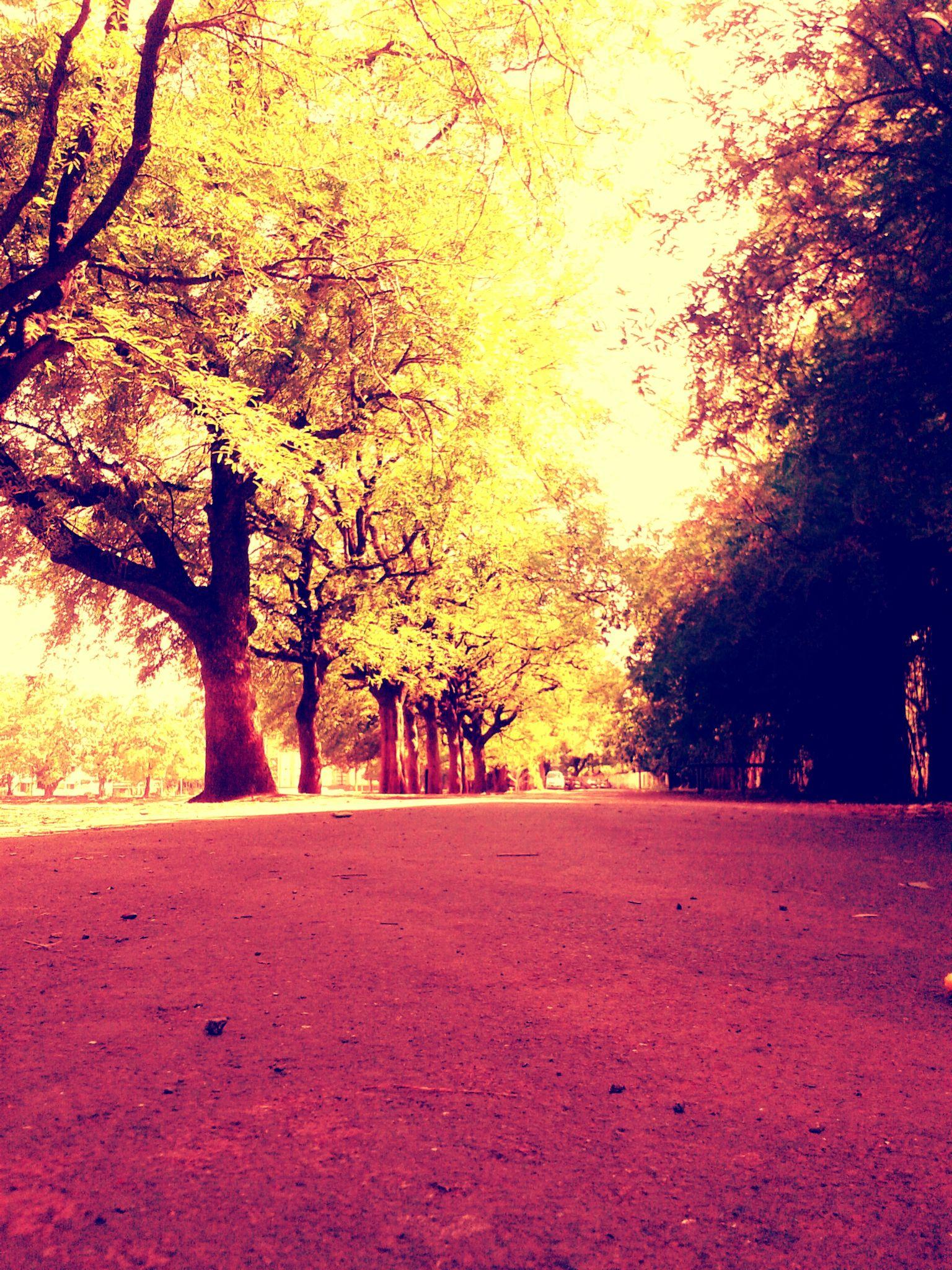 college campus.  by Aditya kulkarni