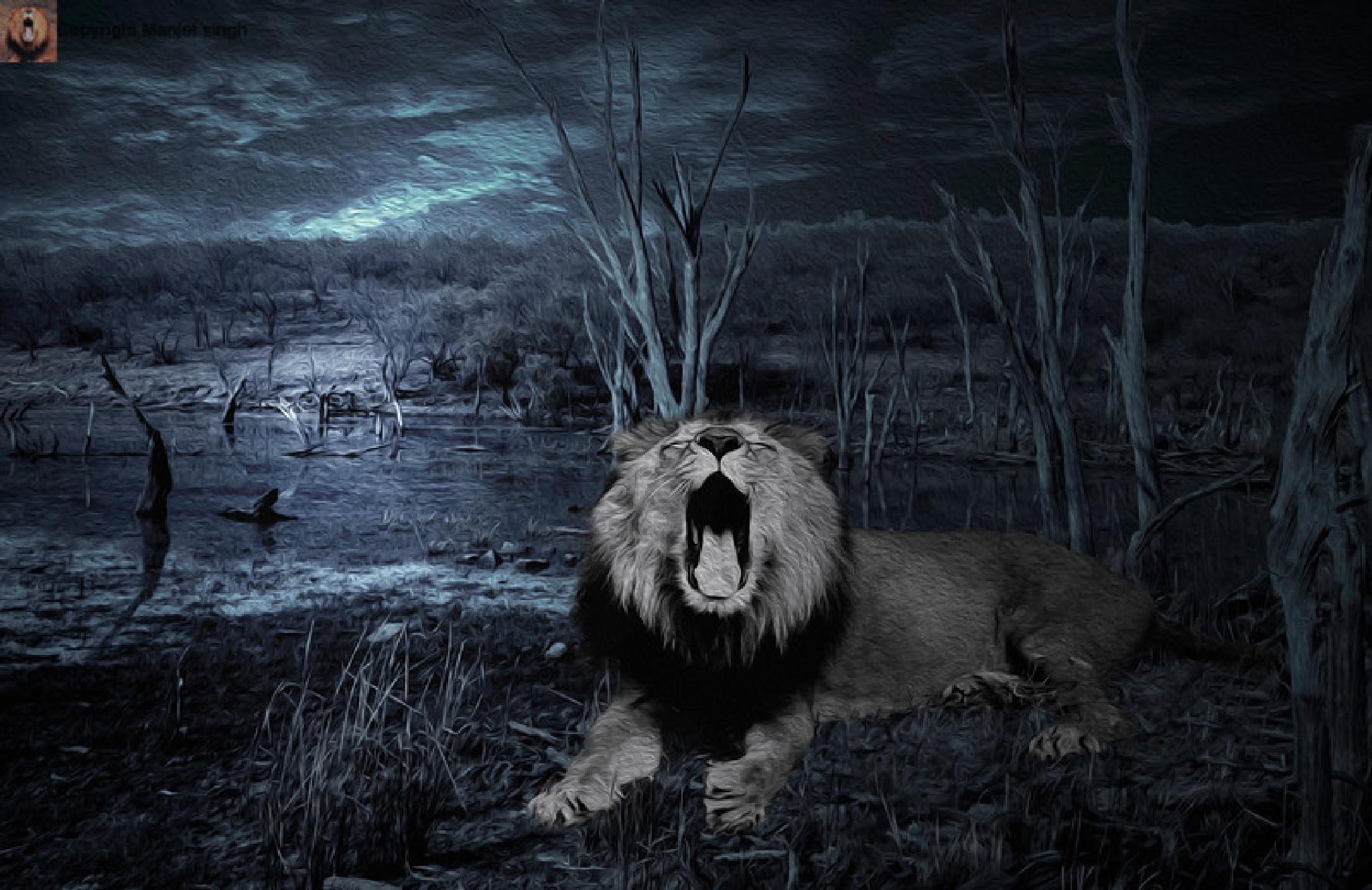 Roar of Lion  by Manjot Singh Sachdeva
