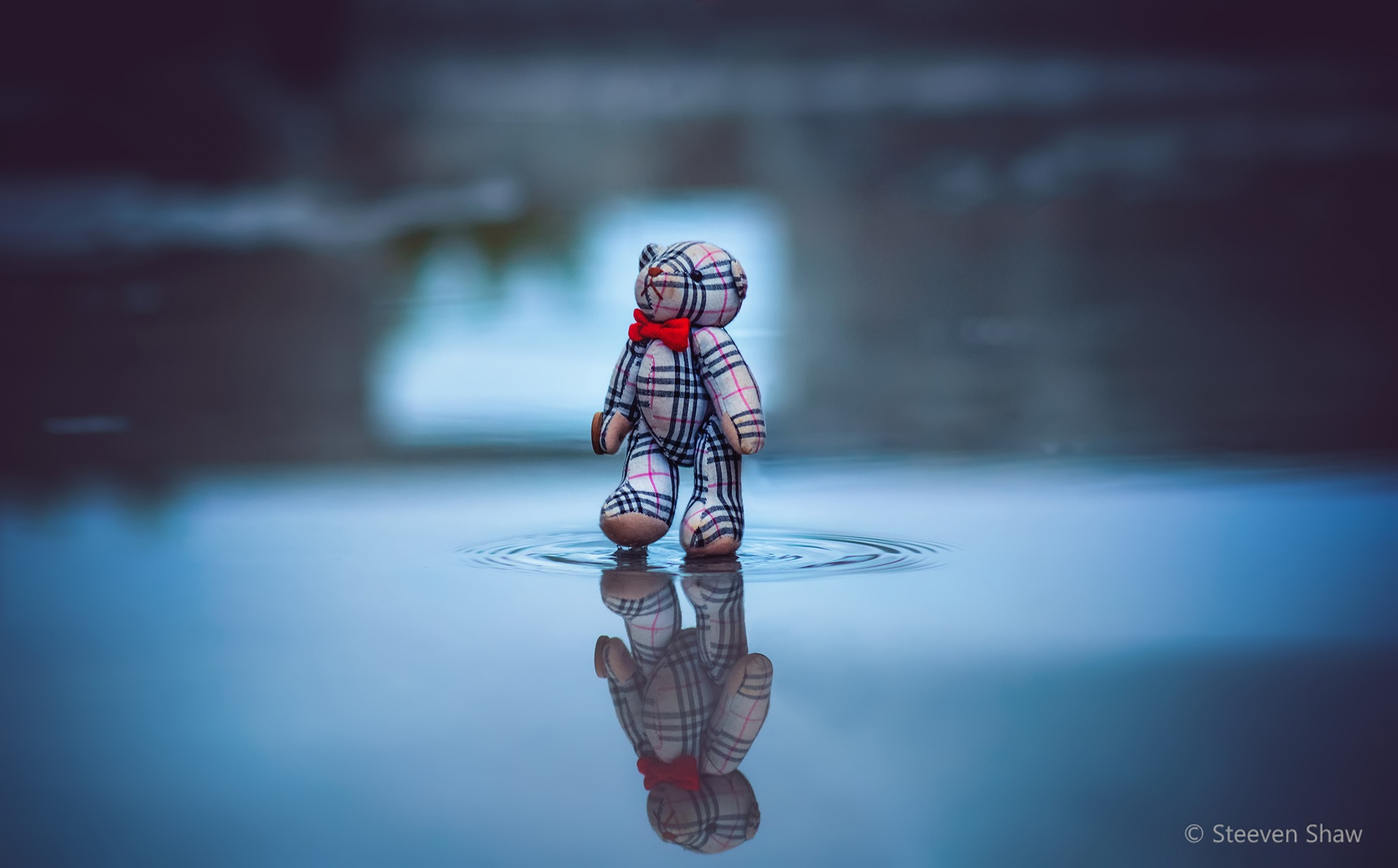 Walking On Water by Steeven Shaw