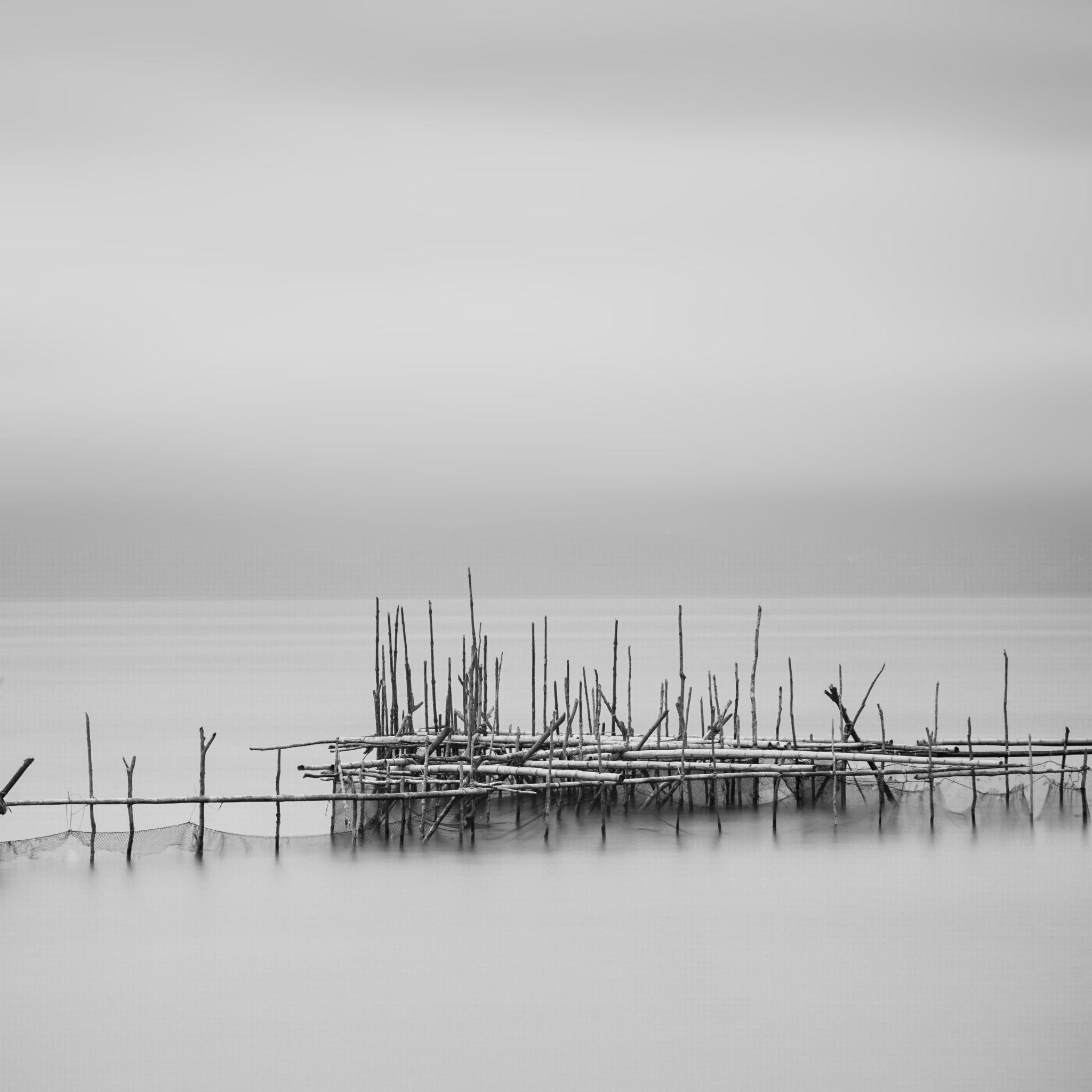 Still ... by Daniel Tjongari
