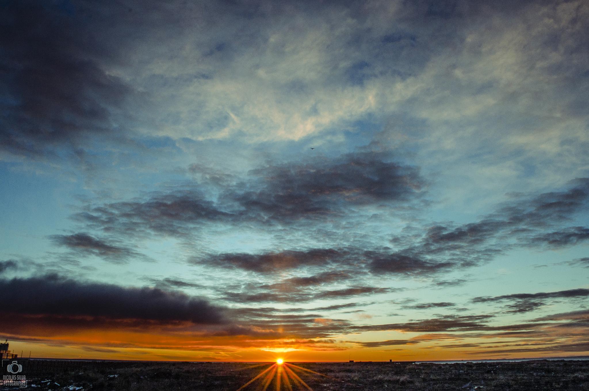 Rising Sun by Nicolás Silva