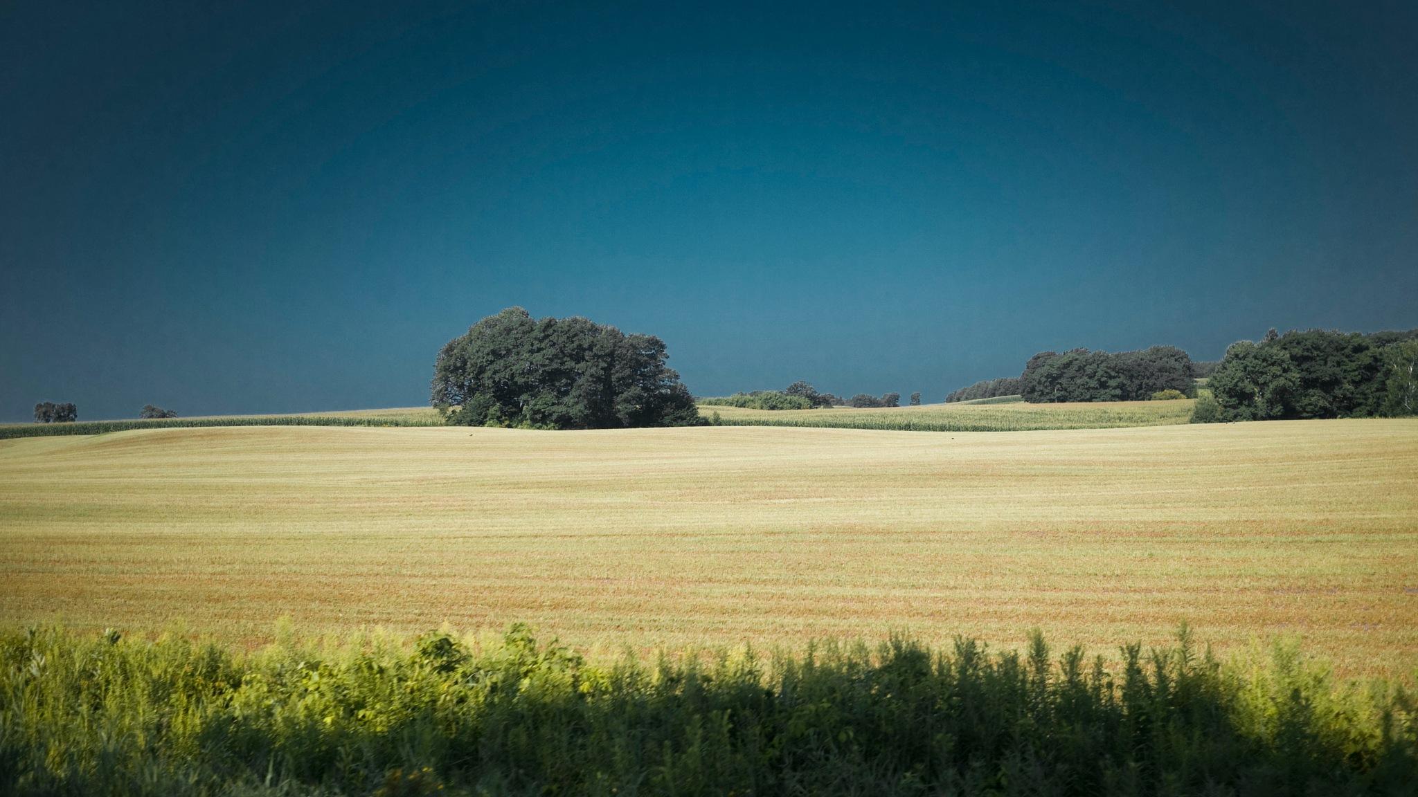 Farm field shot through a car window by Robert Henry