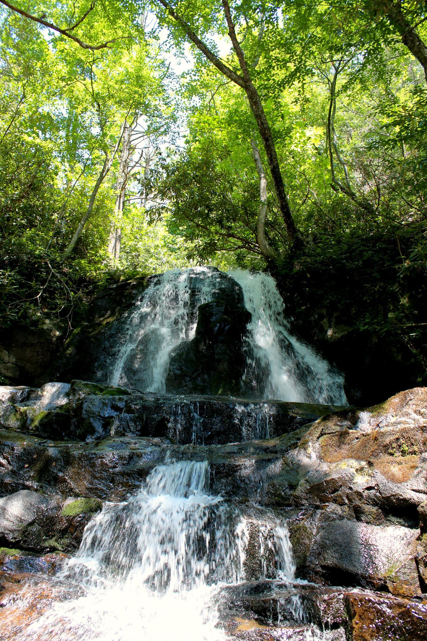 Photo in Nature #waterfall #nature #hike