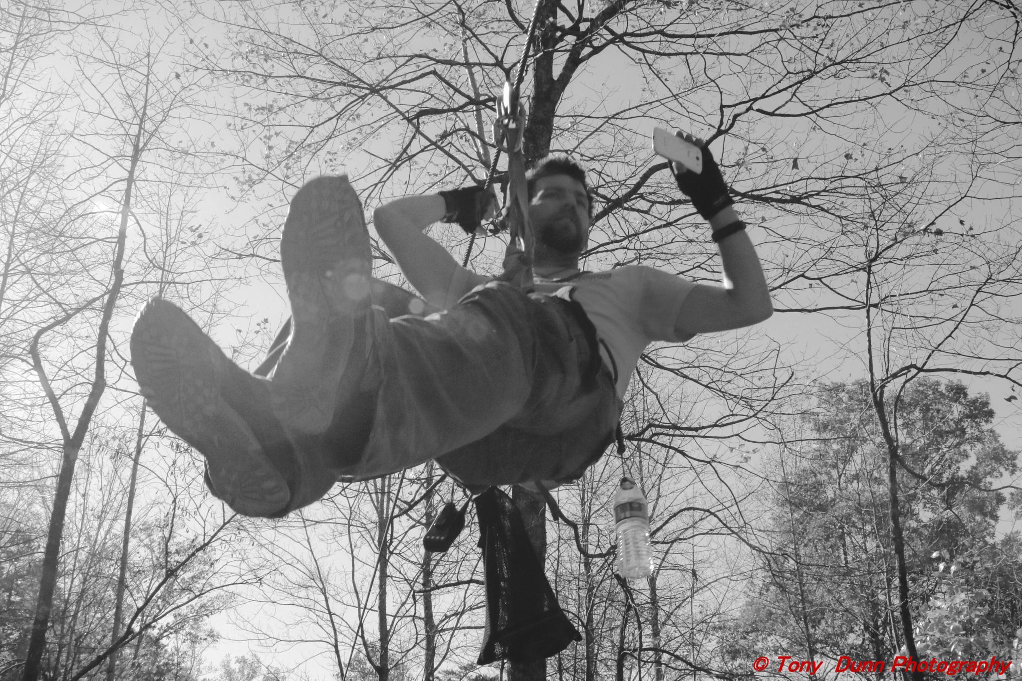 Zipline by Tony Dunn