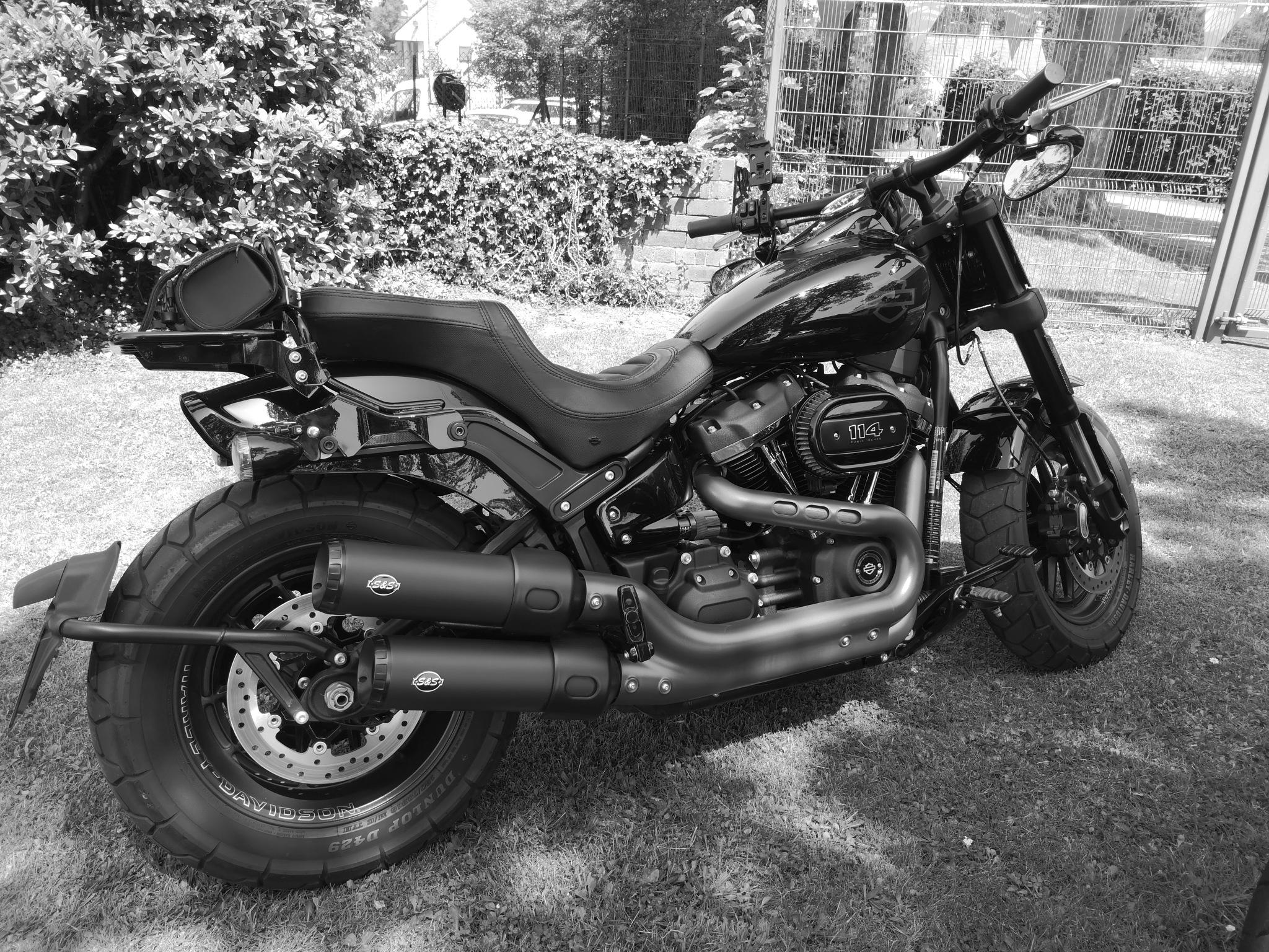 A stunning new Harley Davidson  by Darren Claxton