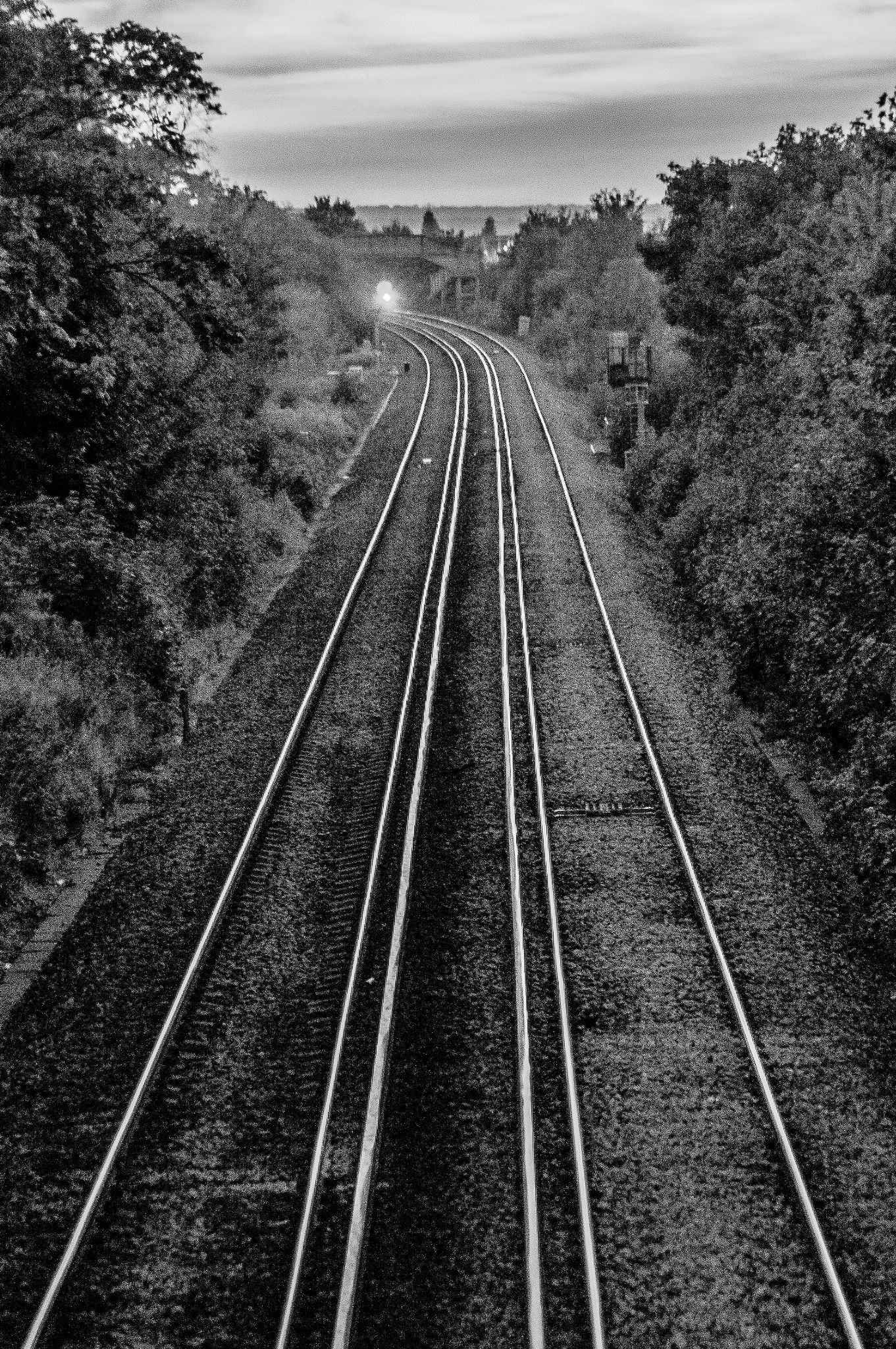Train line by Sylvester Cologne