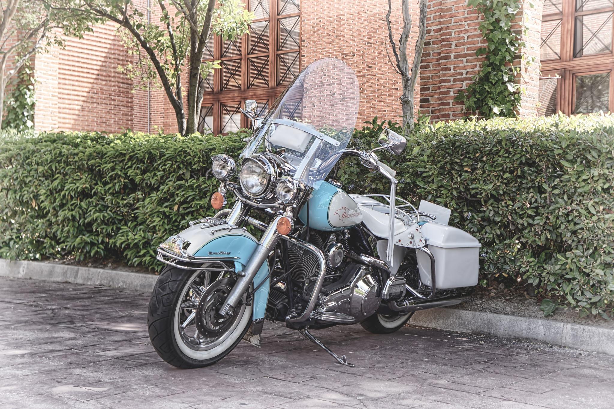 Harley Davidson Road King by Miguel Ángel Prieto Ciudad