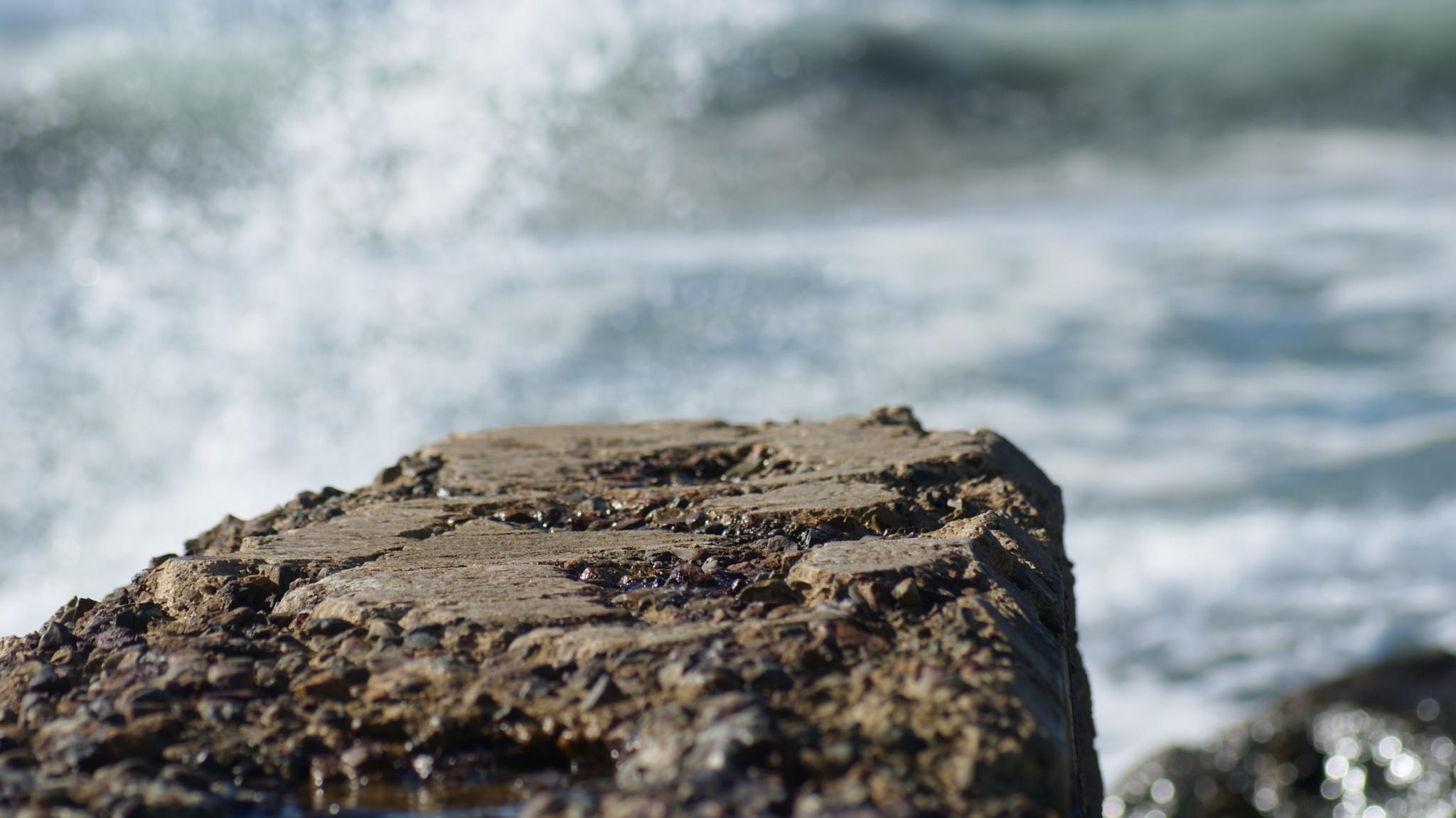 Splash by Rose Photography