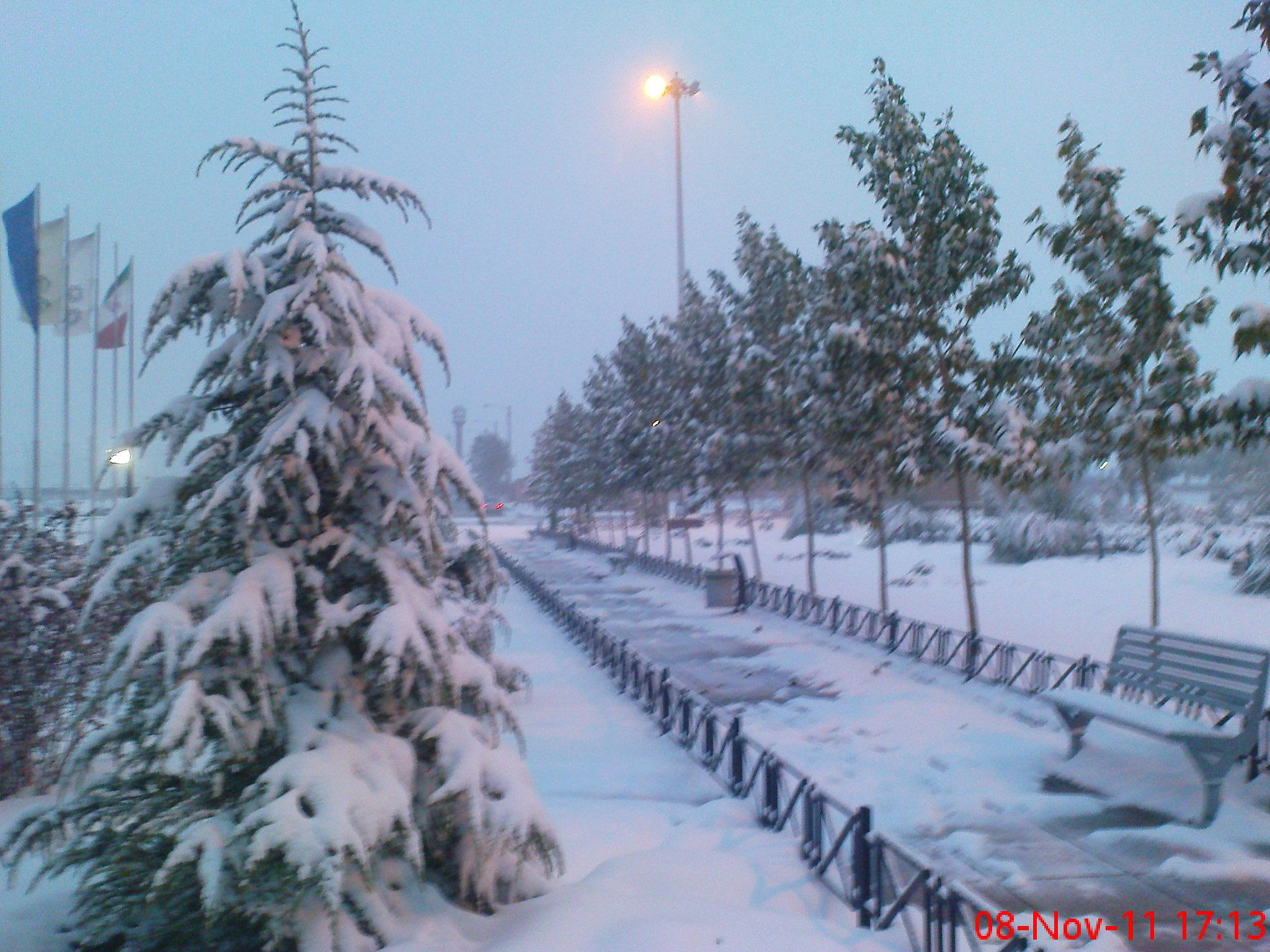 Photo in Random #snow