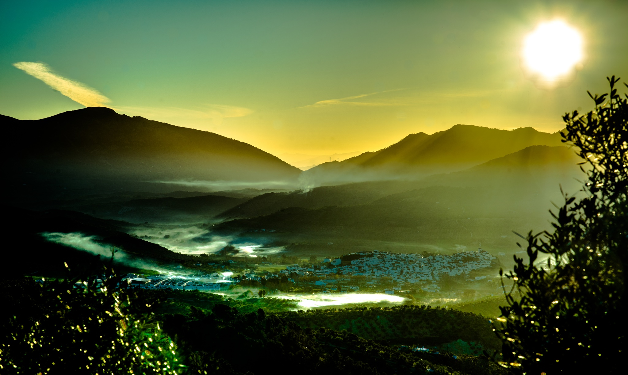 Morning Mist by Jim Buckley