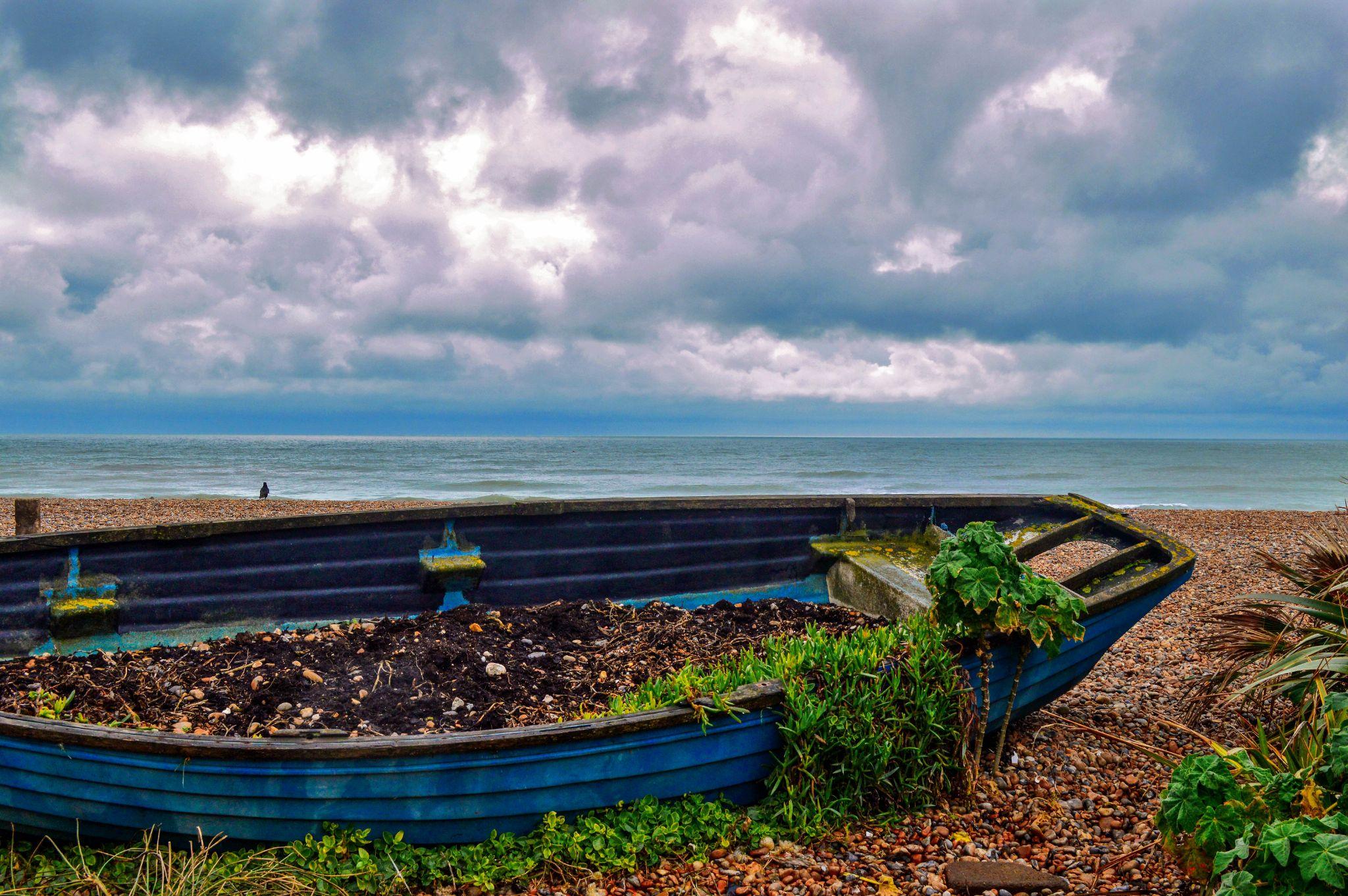 A Sandy Frontier by Zoe Birkbeck