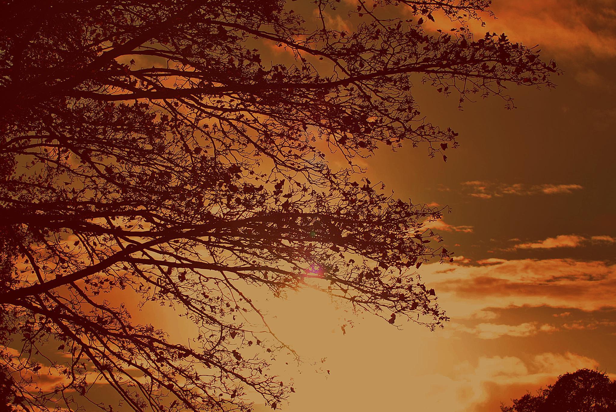 Last  light    over  Lees by gordon simpson