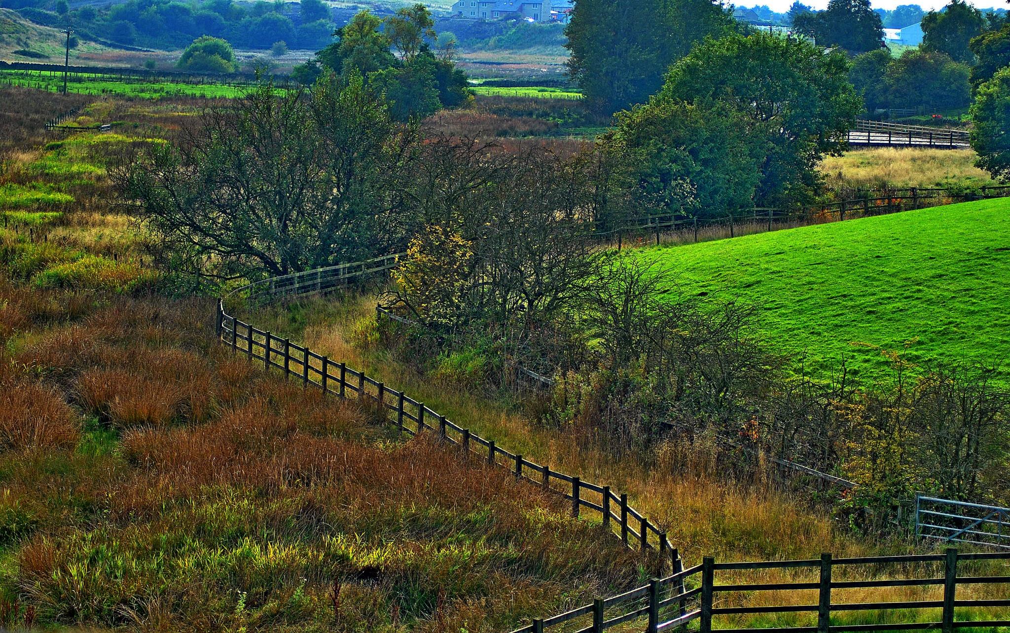 Around  Hollingworth by gordon simpson