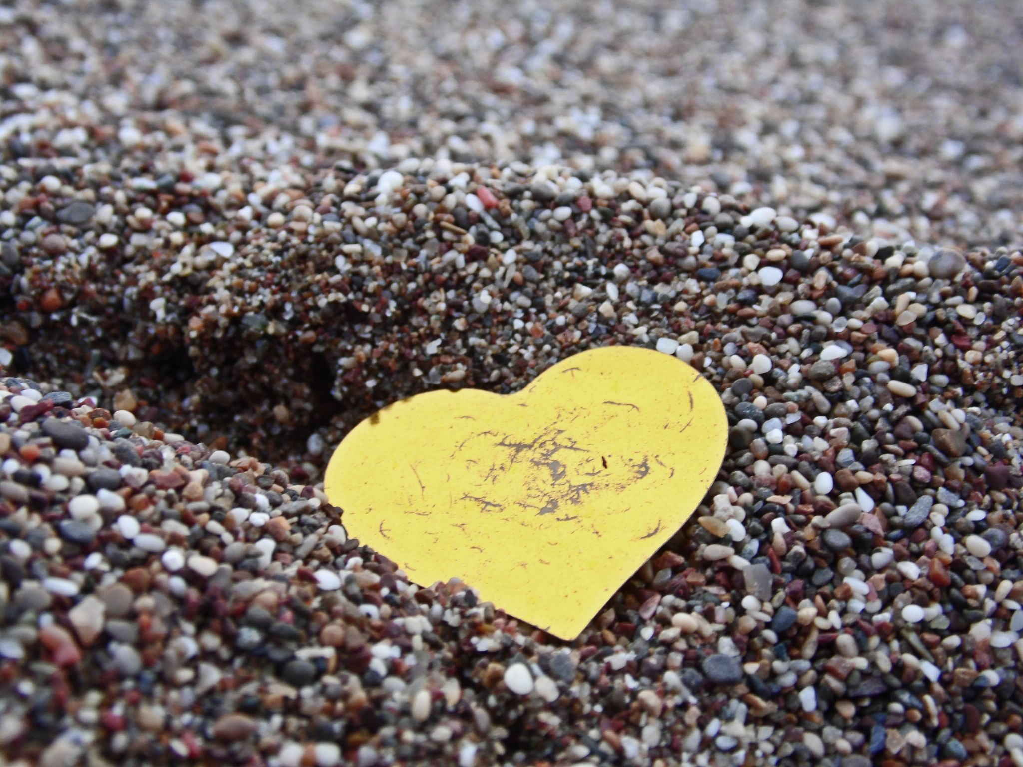 My Heart by  Mert Ozbekligil