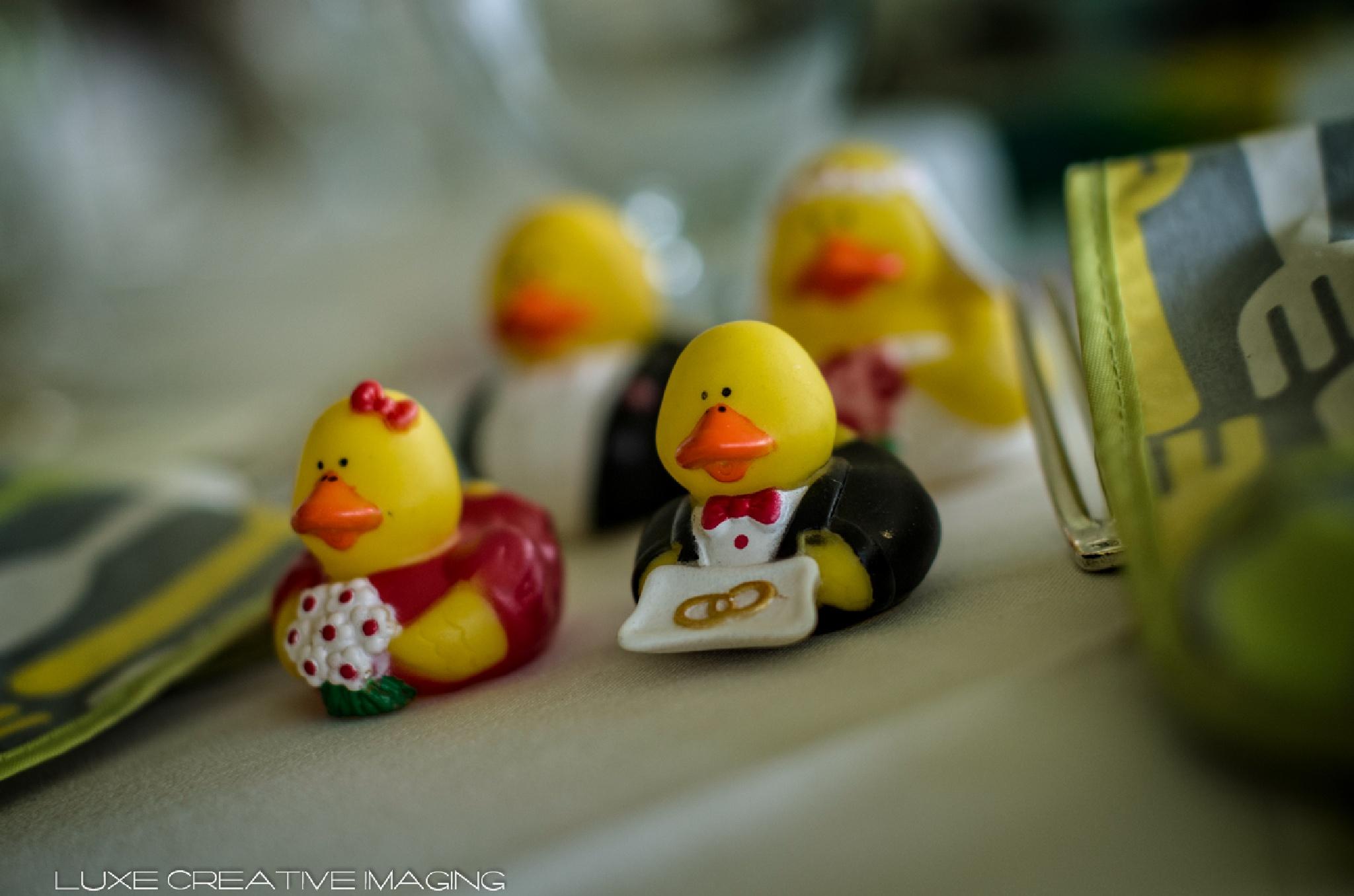 Wedding Quackers by George Pruitt