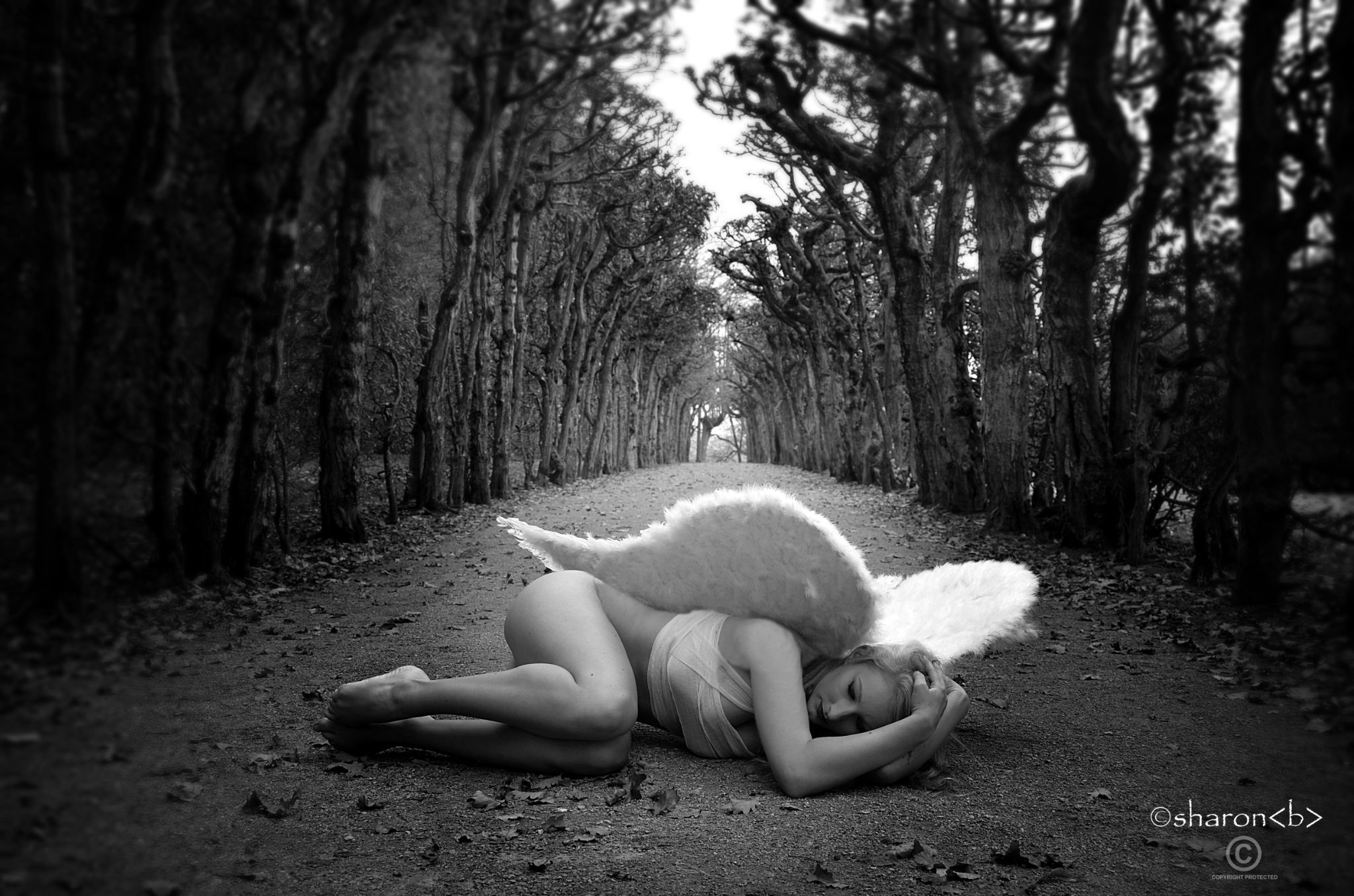 Fallen Angel Sharonb by sharonbphotography