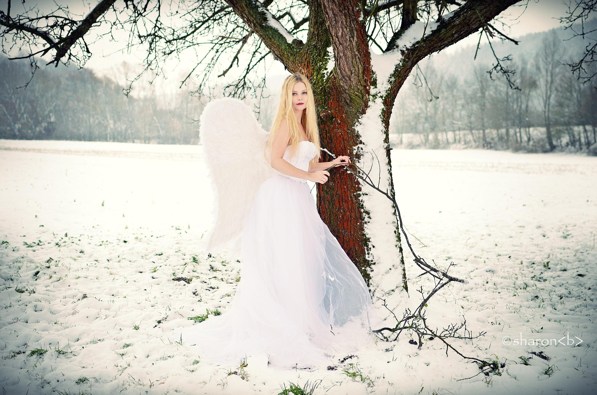The White Angel by sharonbphotography
