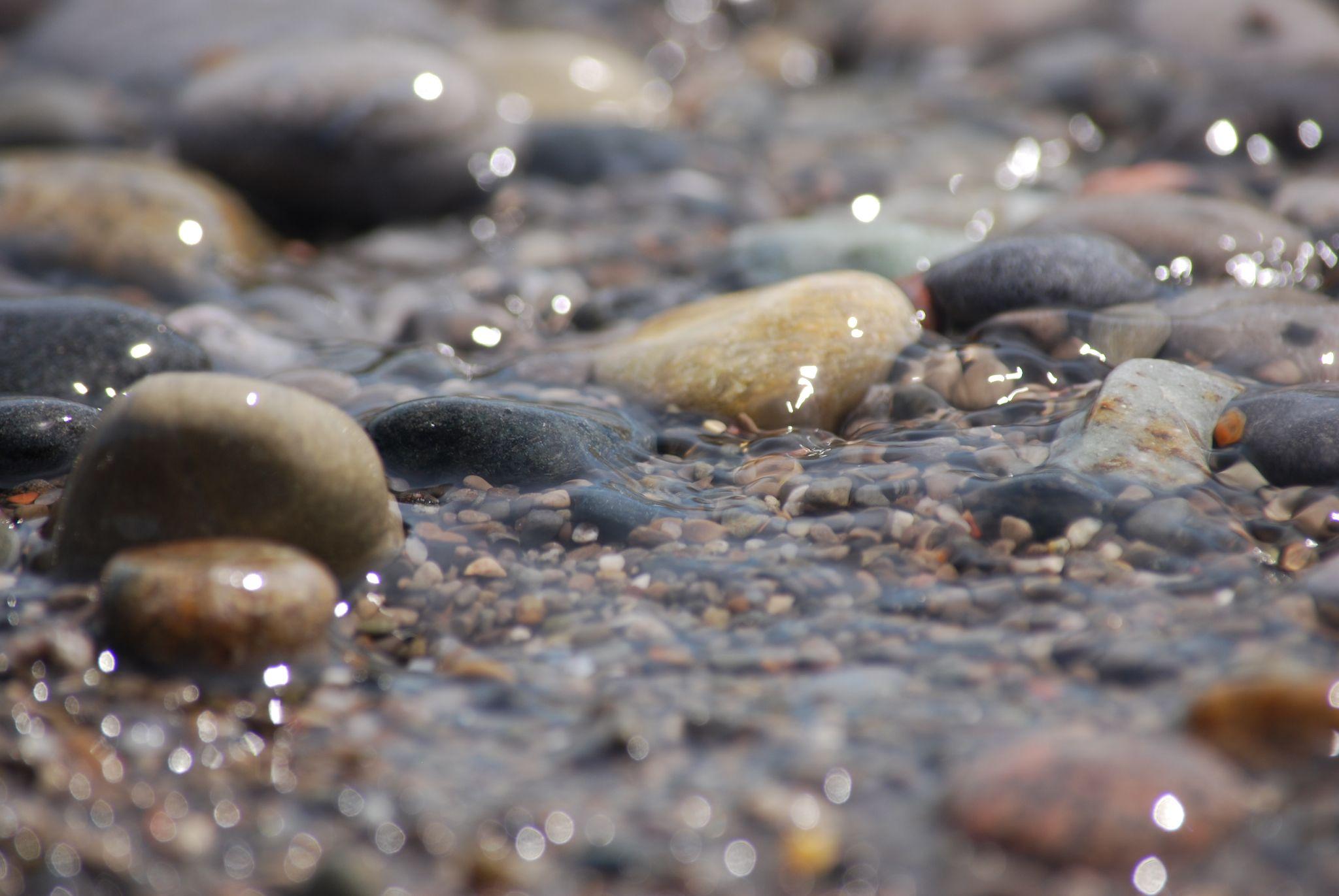 pebbles by tammy loucks