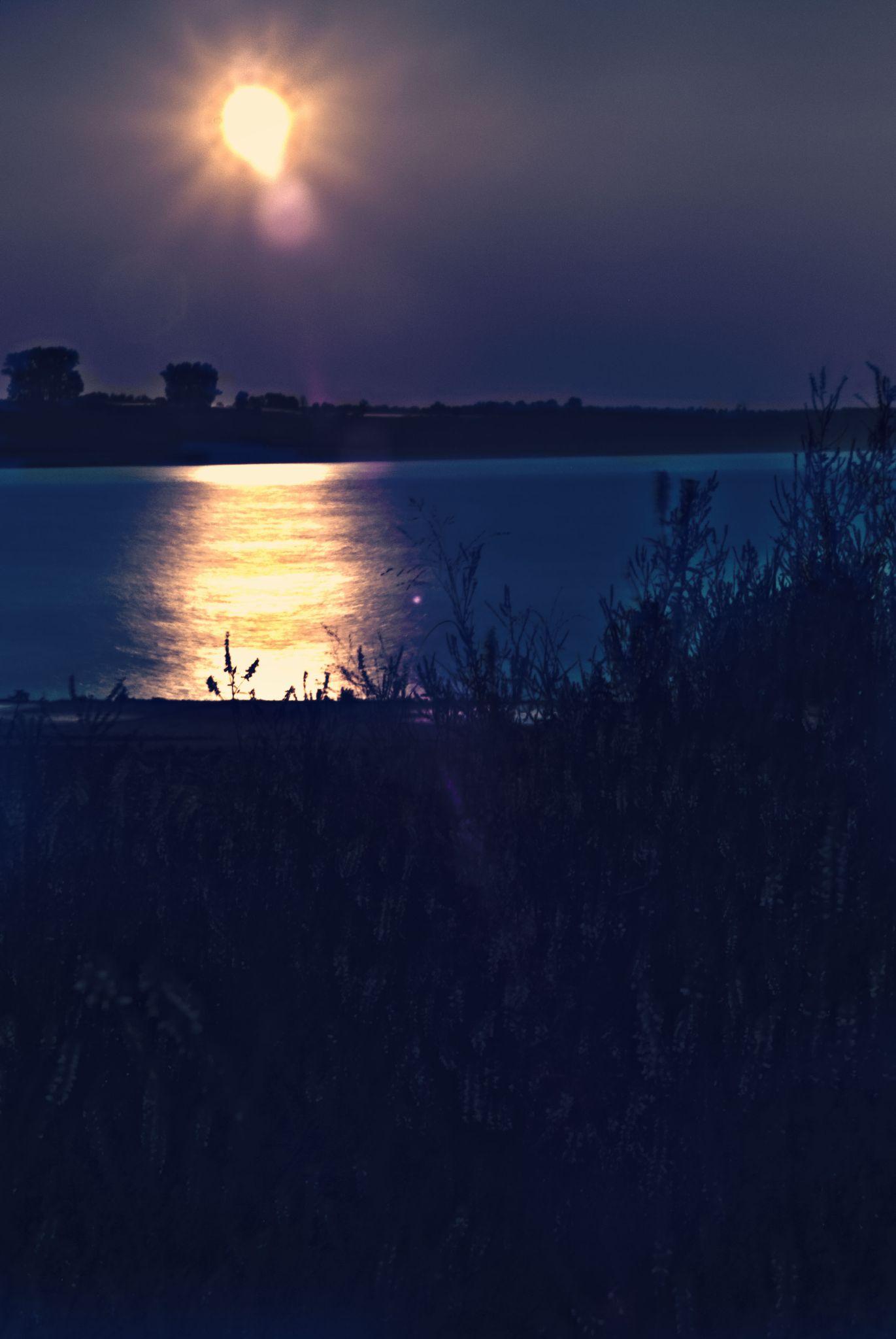 sunset by tammy loucks