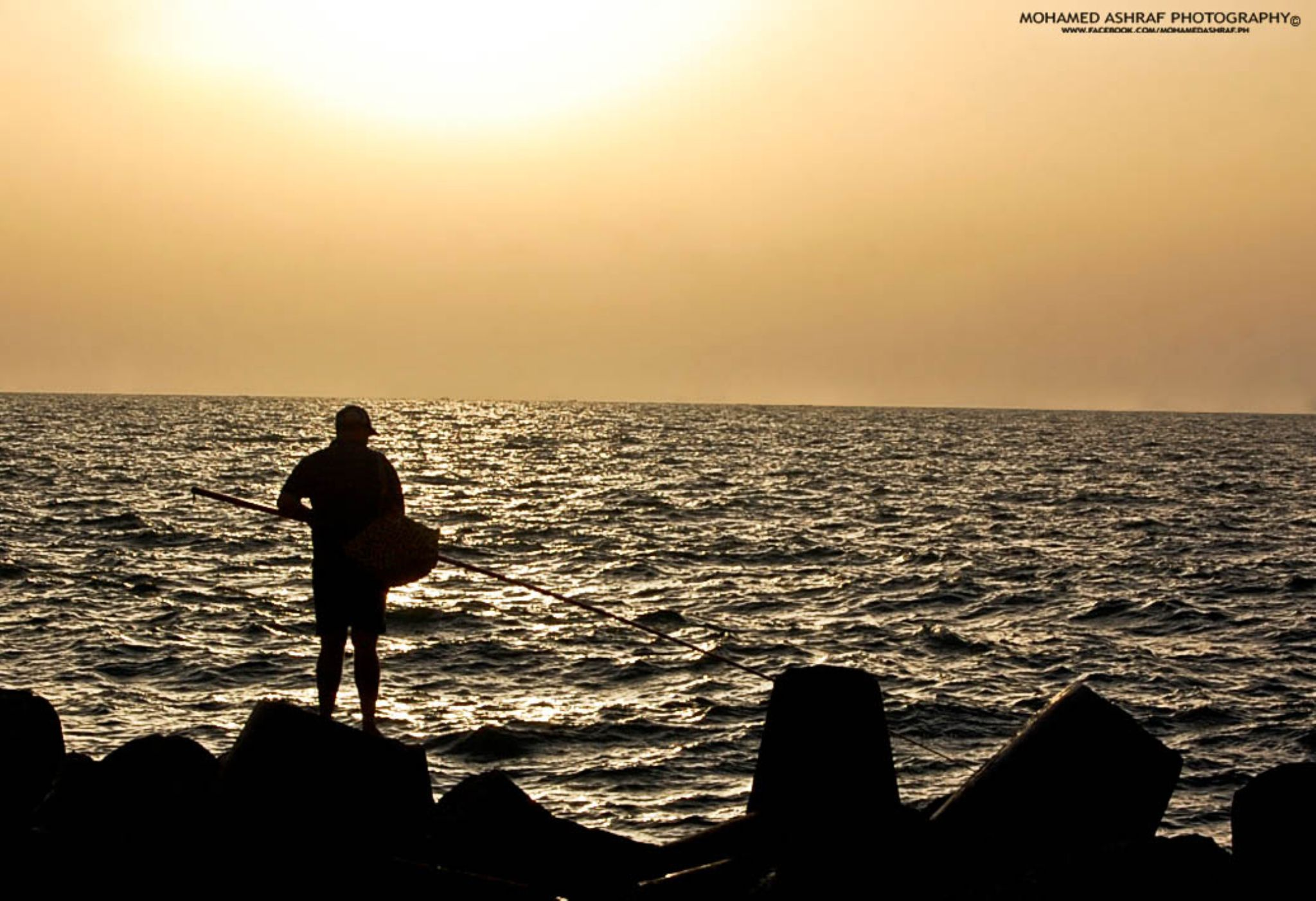 DSC_3689 copy by Mohamed Ashraf