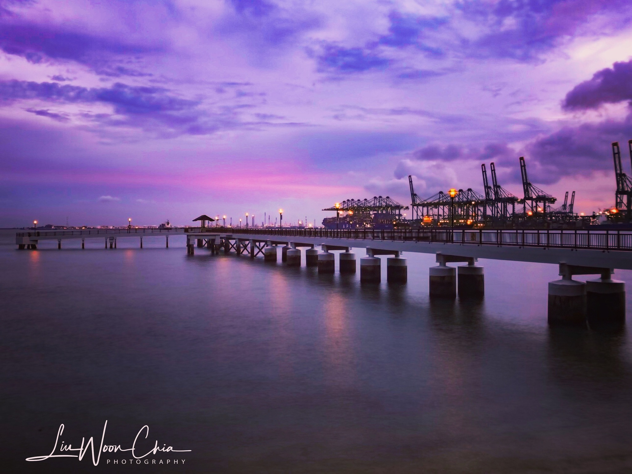 Color purple by Woon Chia Liu 🇸🇬
