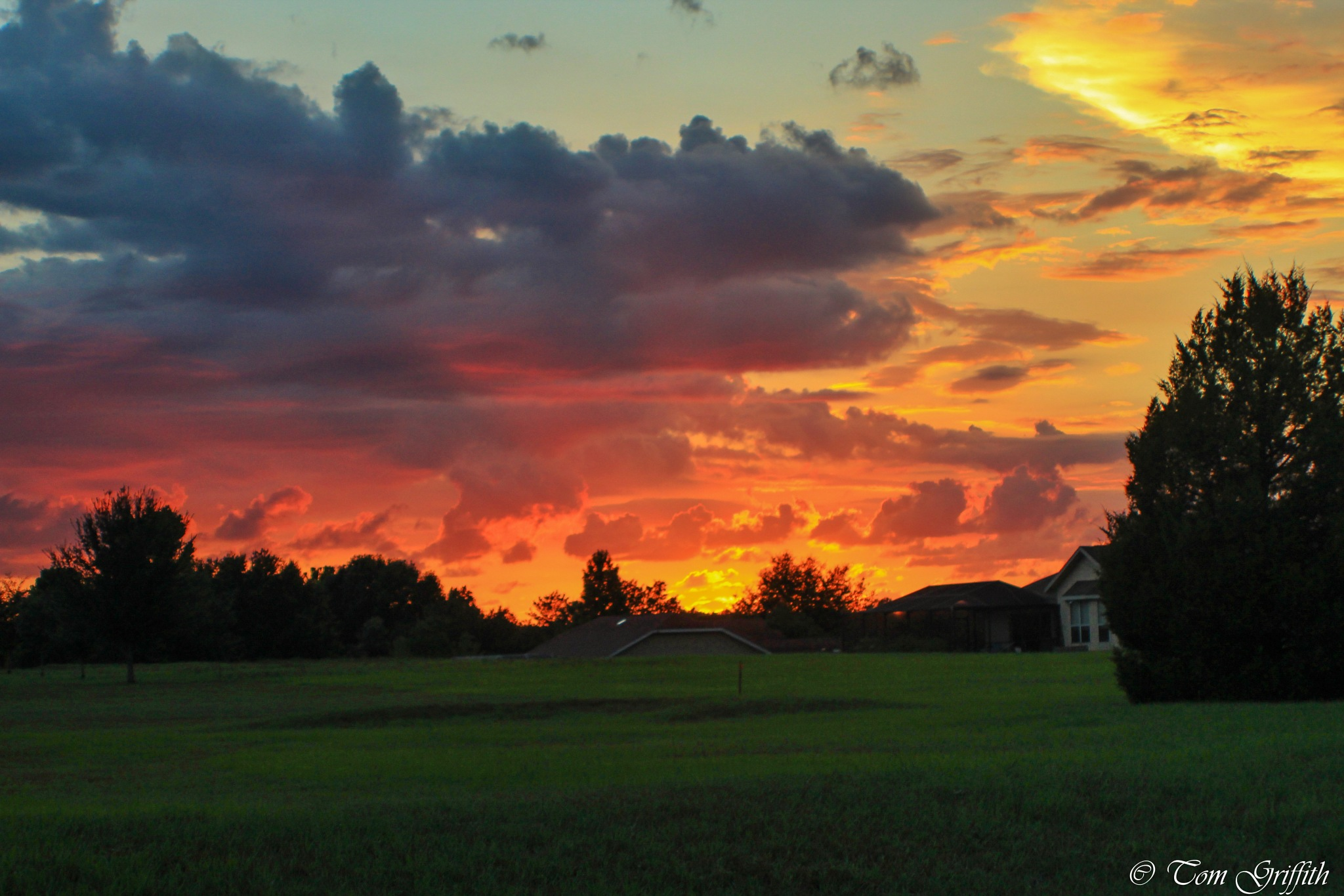 Fire In The Sky by Tom Griffith