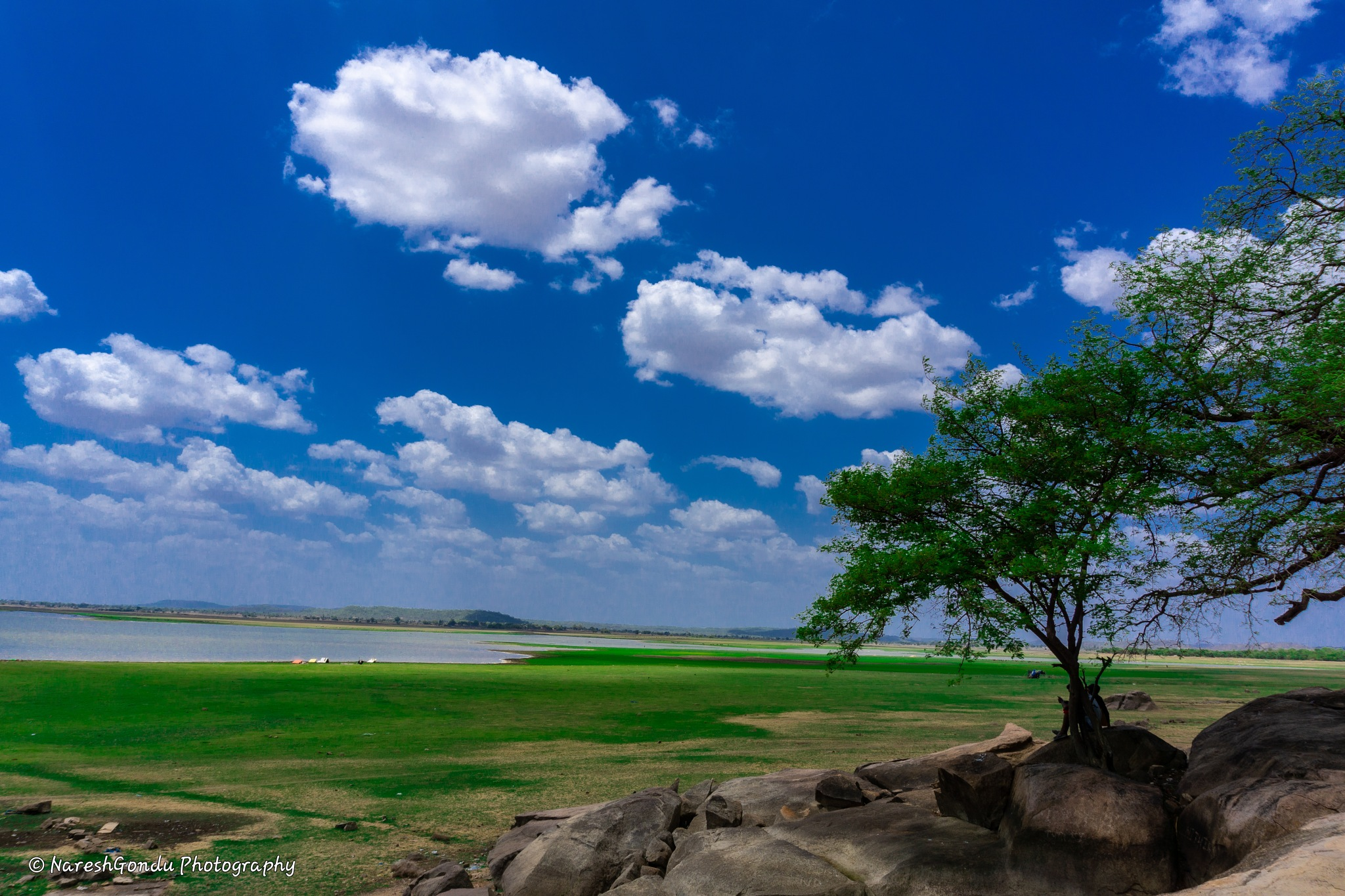 Nature & its beauty by Naresh Gondu